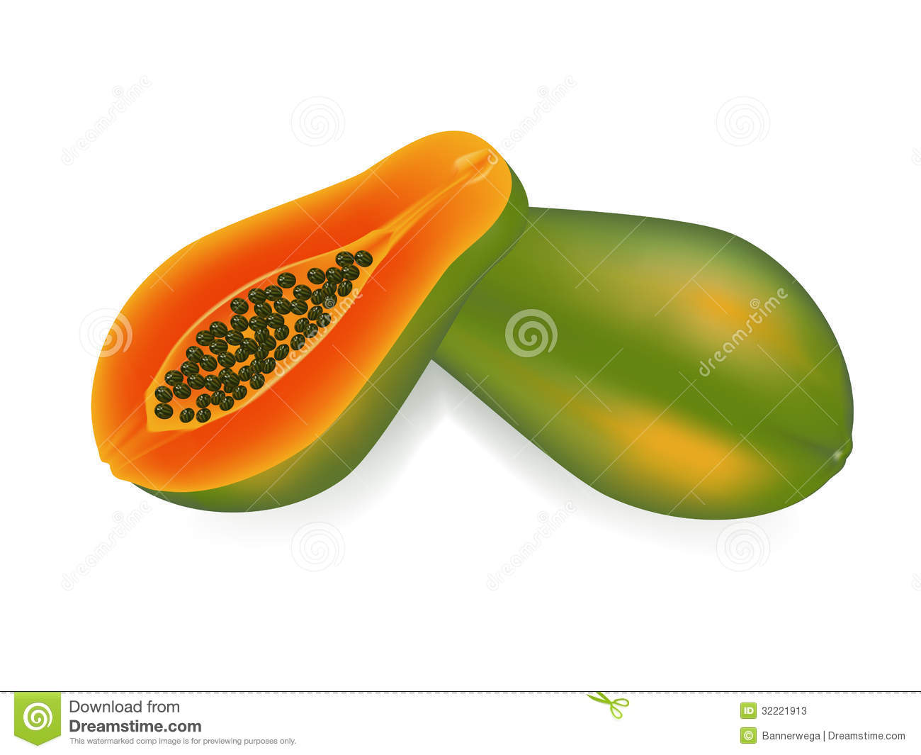 papaya clipart - photo #30