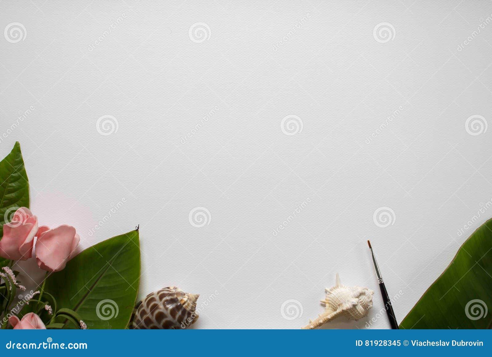 Papel Branco Da Aquarela Com Quadro Da Flor Molde Chique Gasto Com