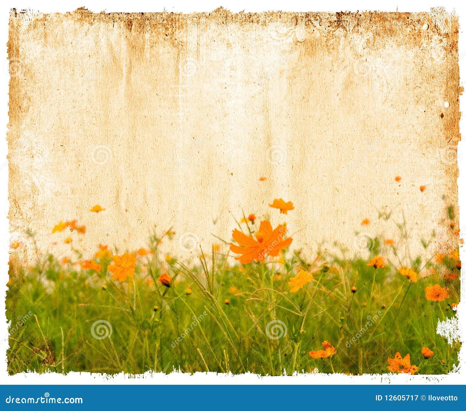 Papel da flor