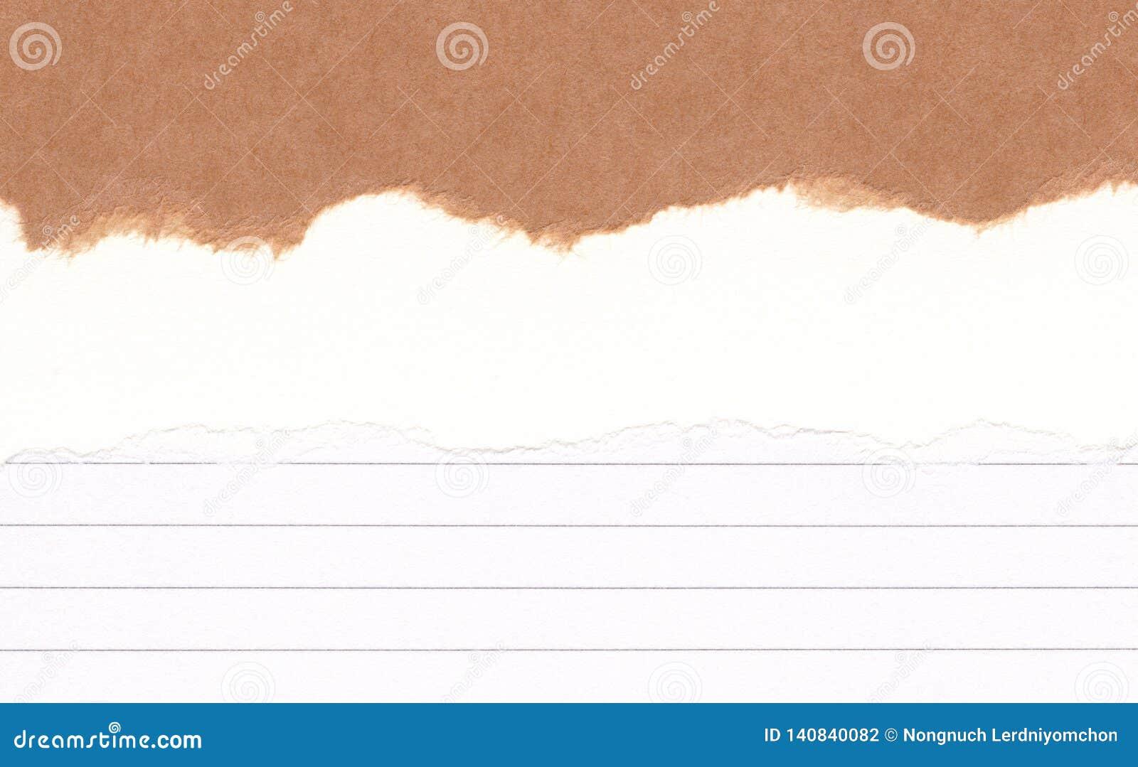 Papel marrom rasgado close up no grunge rasgado fundo da textura do Livro alinhado, Branco Nota de papel do rasgo, folha marrom c