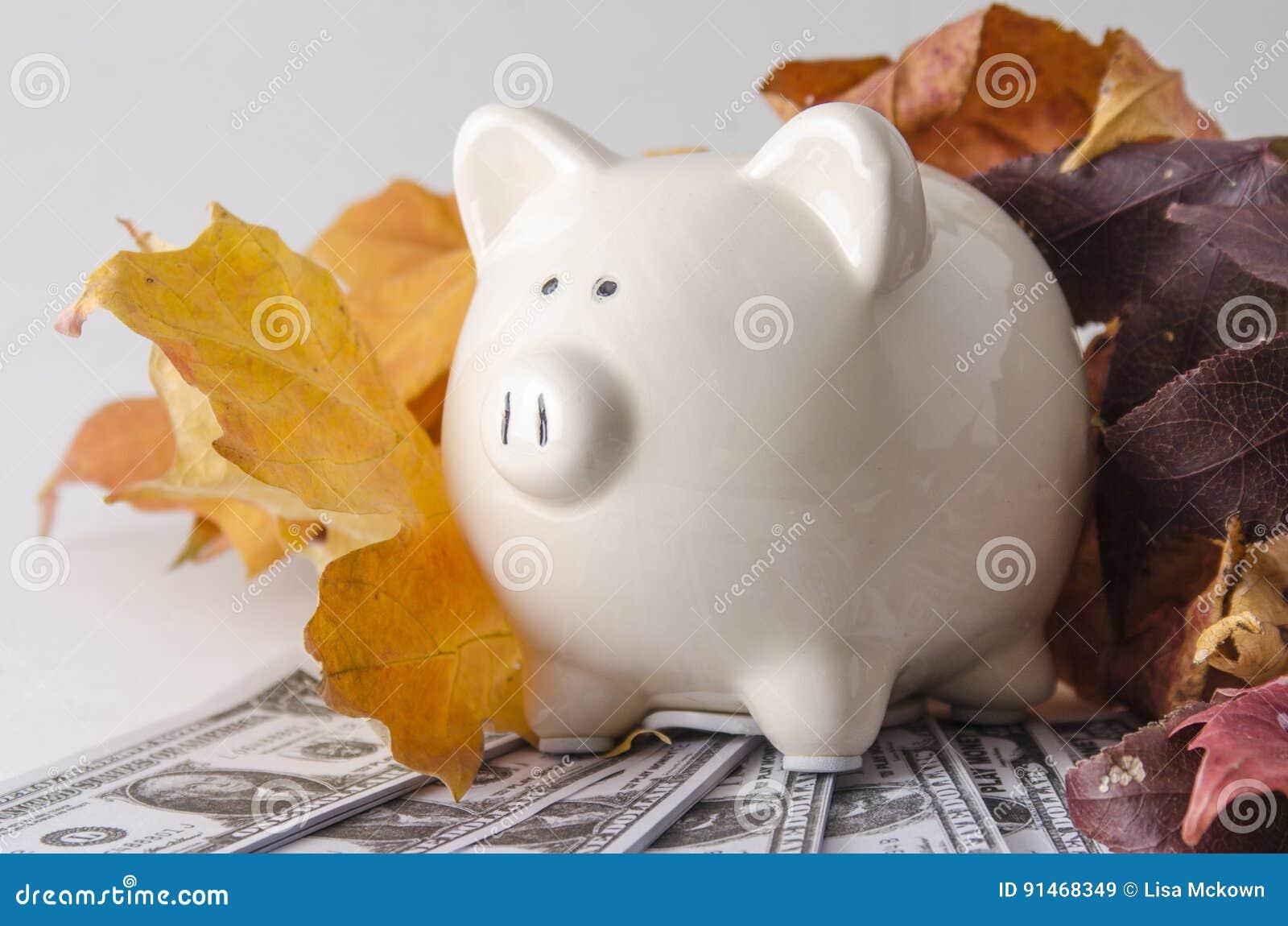 Papel moeda e um mealheiro na queda
