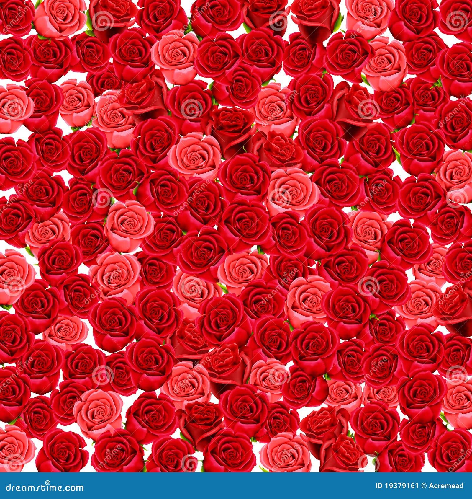 Papel pintado de rosas rojas y rosadas stock de for Papel pintado rosa y gris