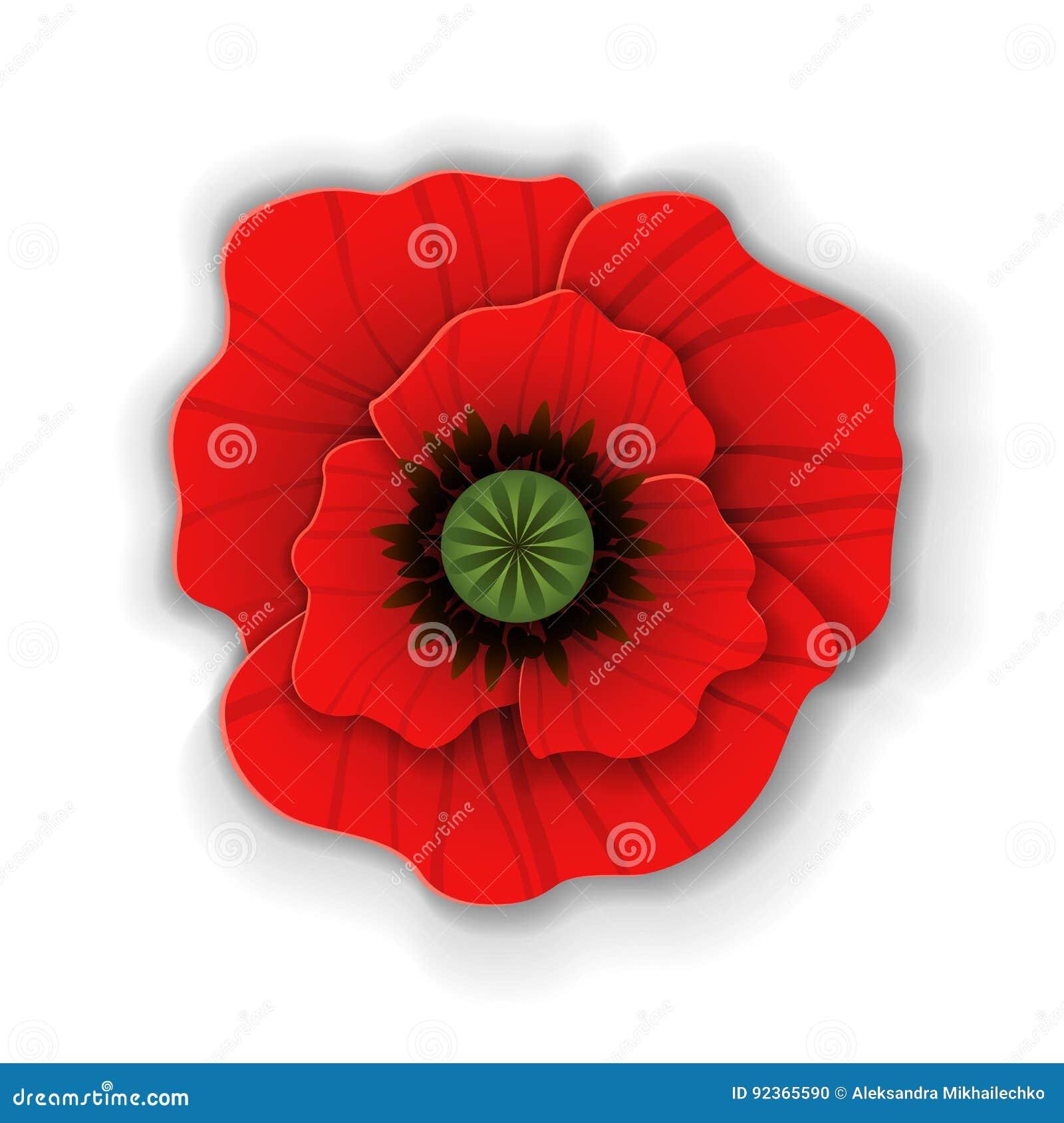 Paper Art Red Poppy Stock Vector Illustration Of Background 92365590