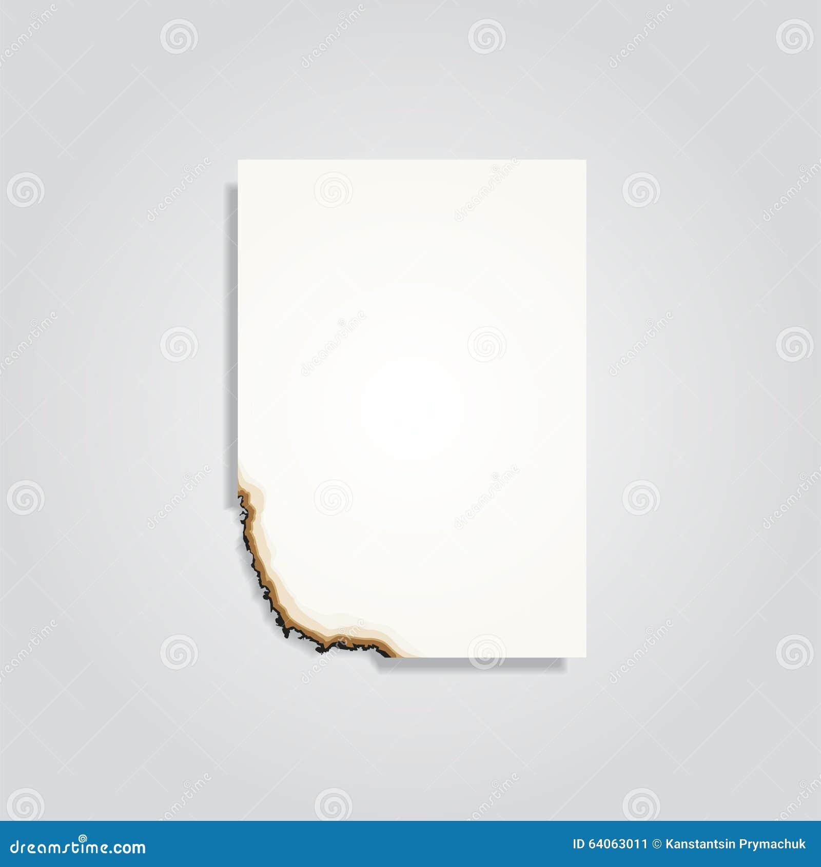 Paper Banner Template For Your Design Vector Illustration