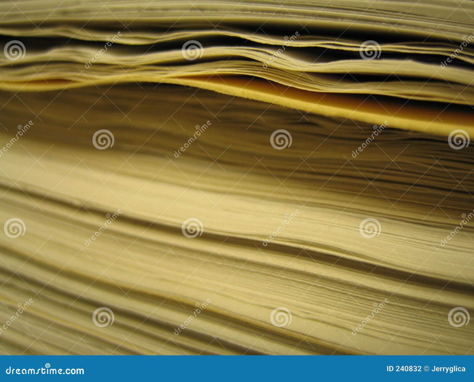 Paper bunt