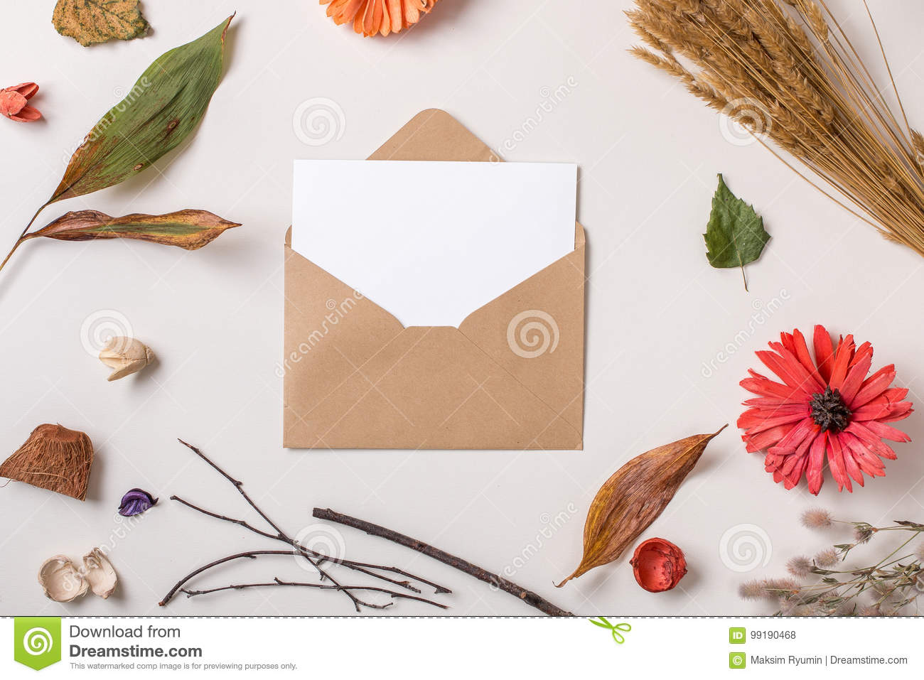 paper card in envelope composed with autumn dry plants
