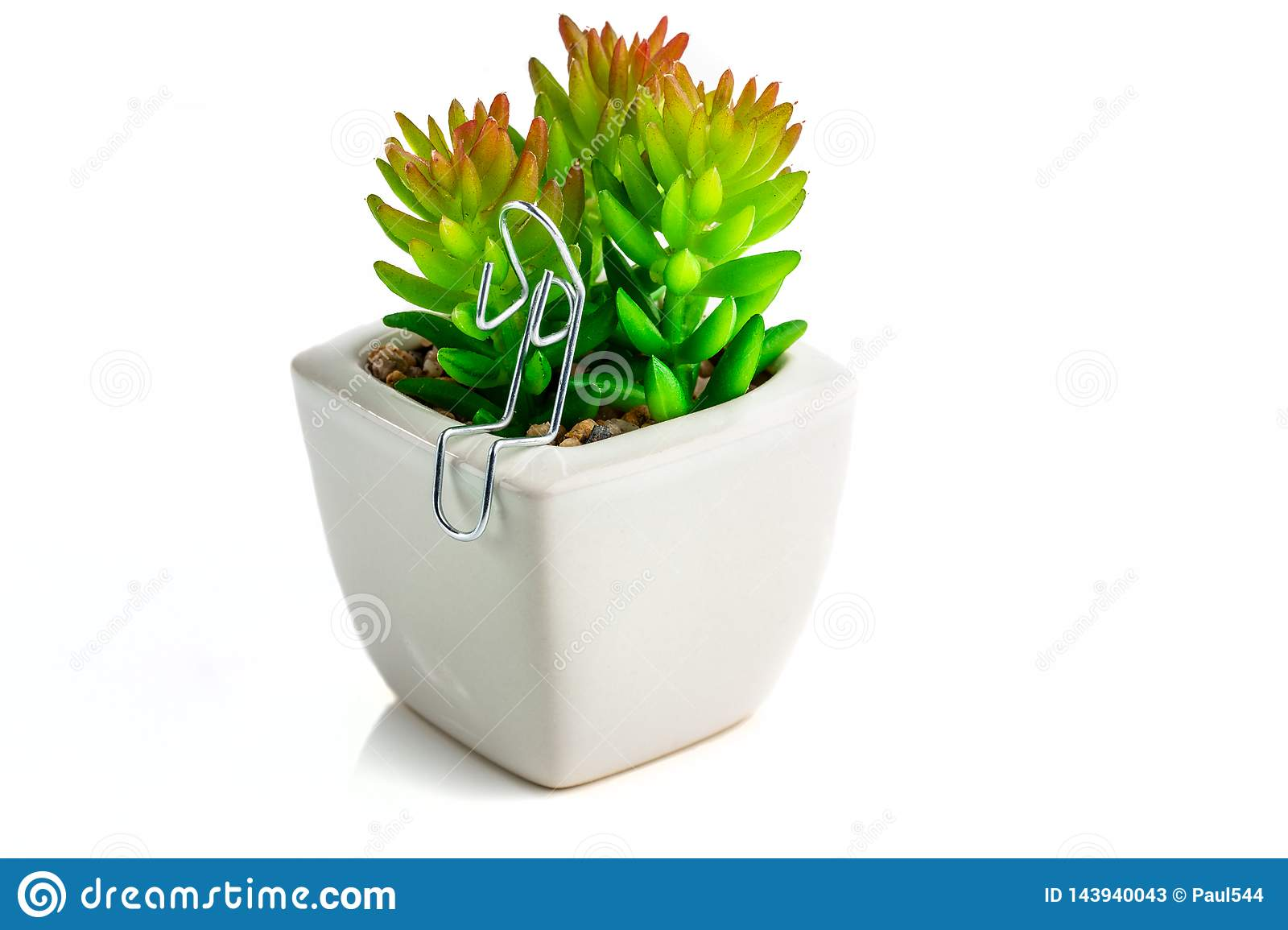Paper Clip Character sat with a Cactus Plant