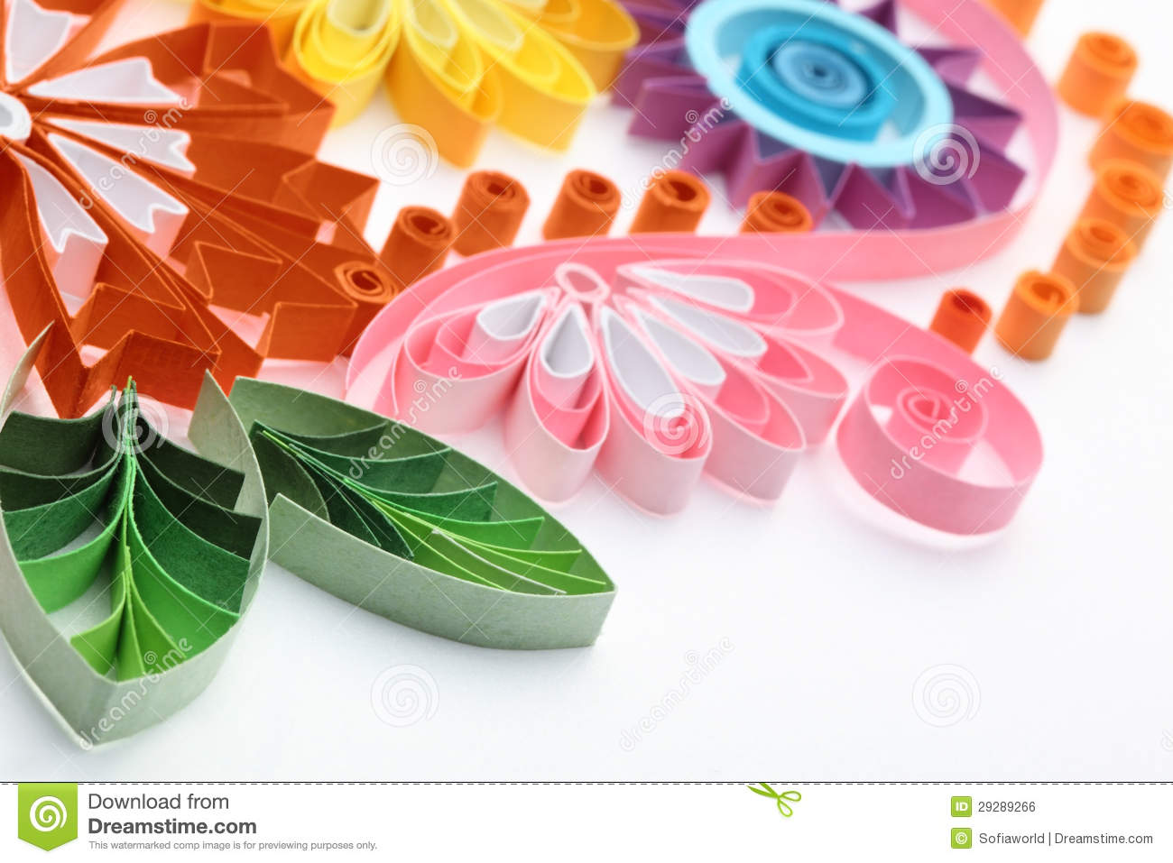 Paper Flower Stock Photo Image Of Green Paper Background 29289266