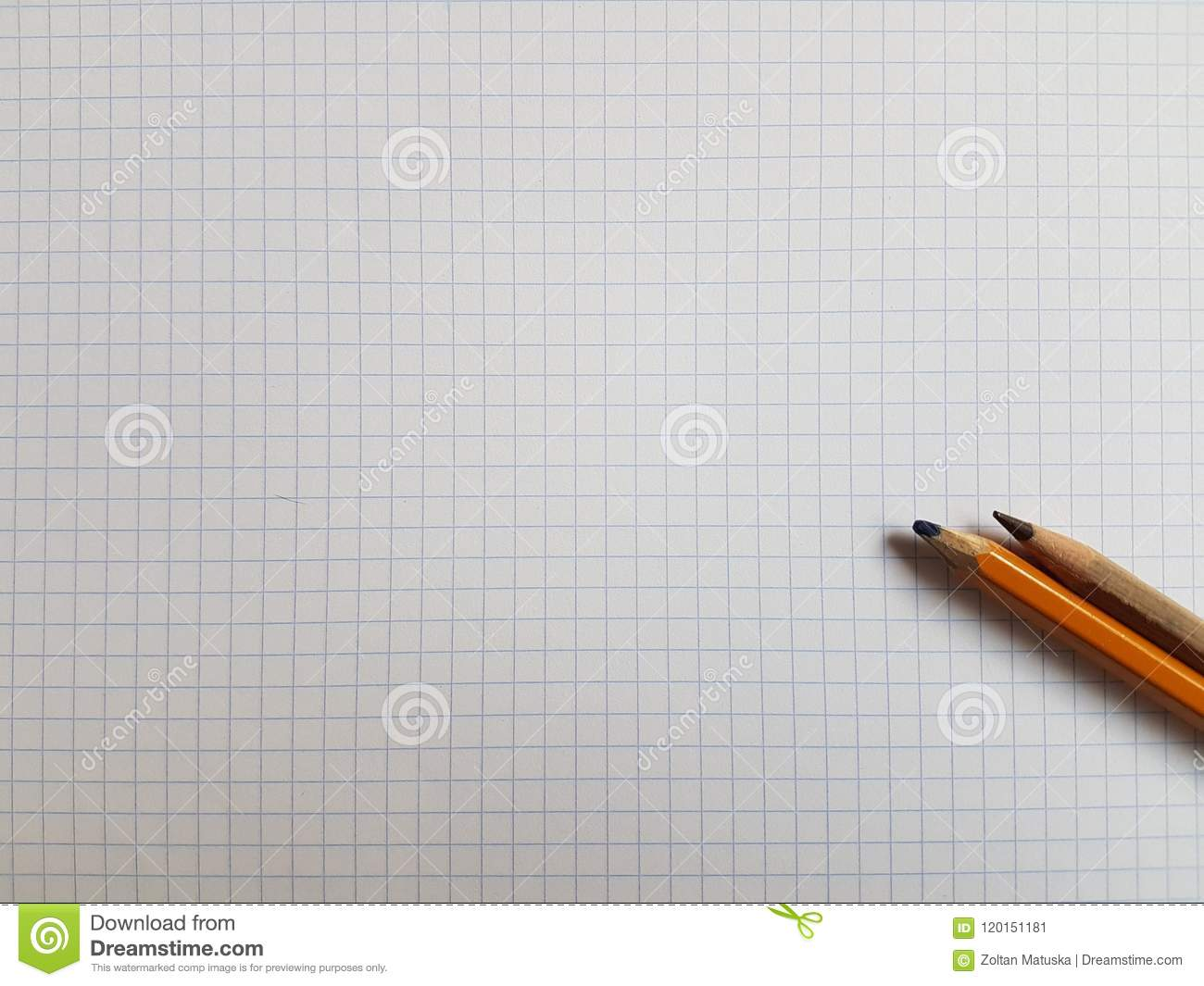 paper notebook sheets empty blank squared lines spiral office page