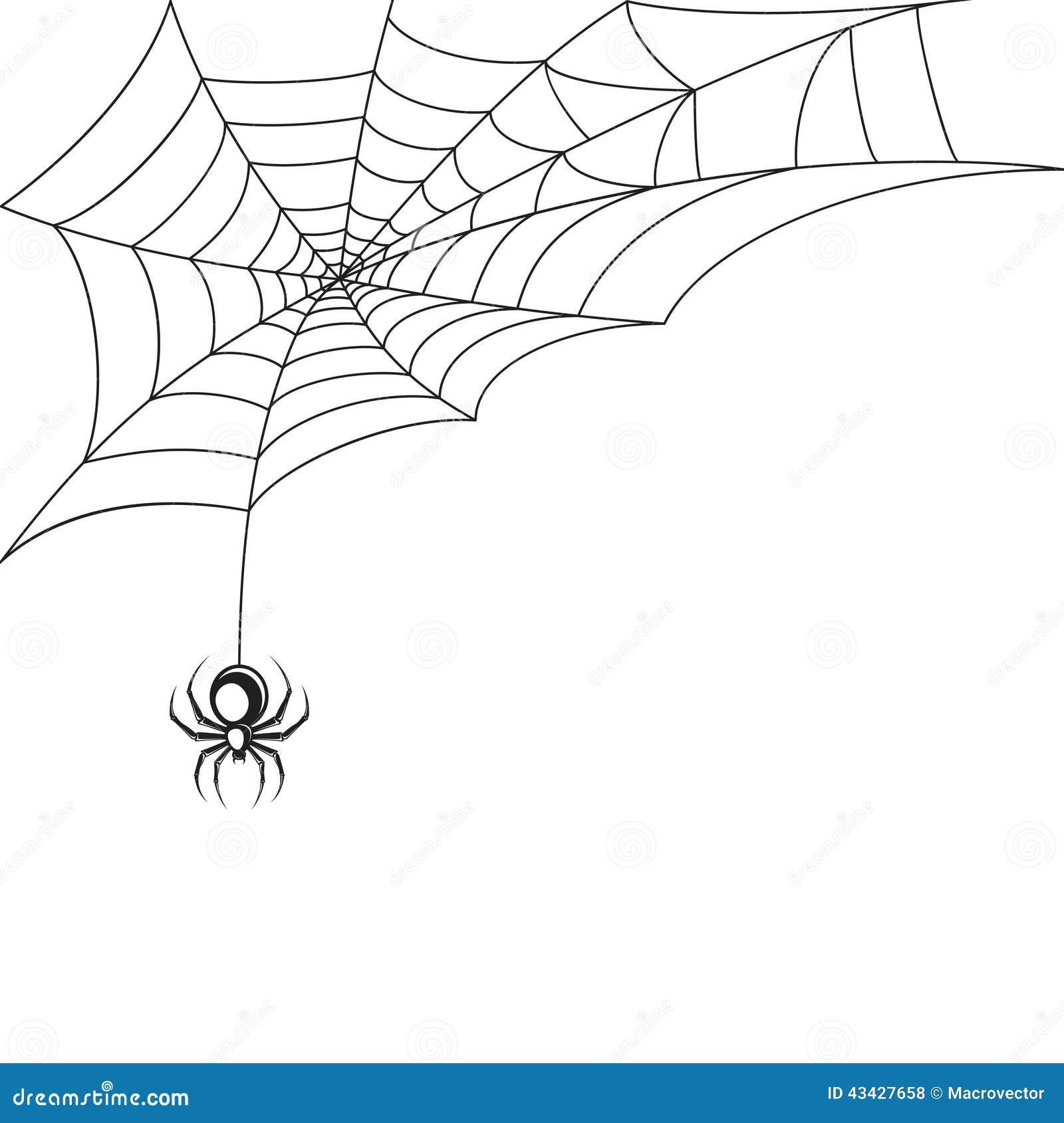 Papier peint de toile d 39 araign e illustration de vecteur image 43427658 - Toile d araignee en papier ...
