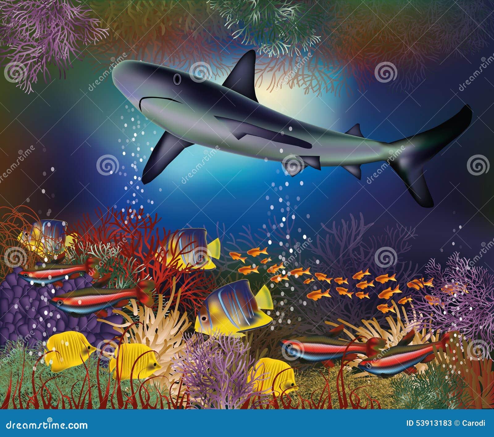 Papier Peint Sous-marin Avec Le Requin Illustration de Vecteur - Illustration du plage, animal ...