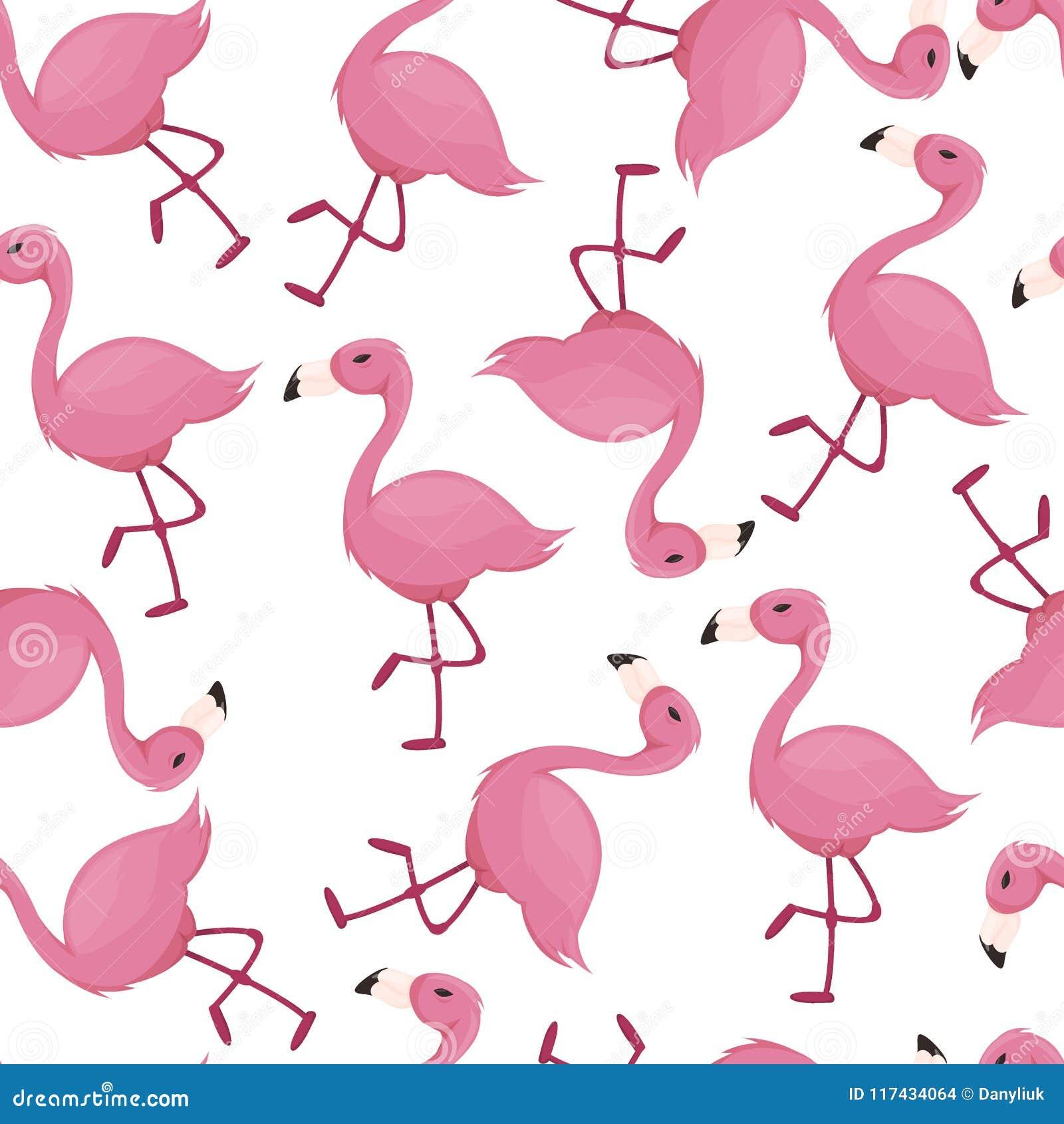 Papier Peint Tropical De Zoo De Modele De Flamant De Rose D Oiseau D