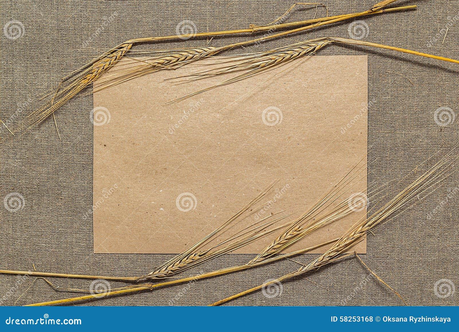 Papier vide avec des épillets de blé