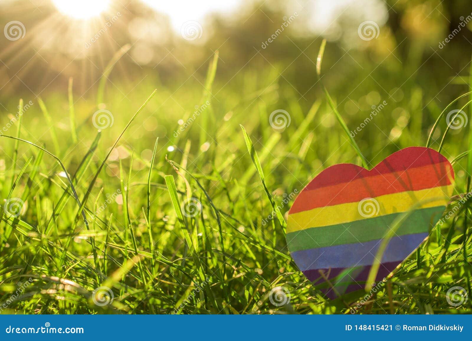 Papierherz gemalt in der Regenbogenfarbe LGBT