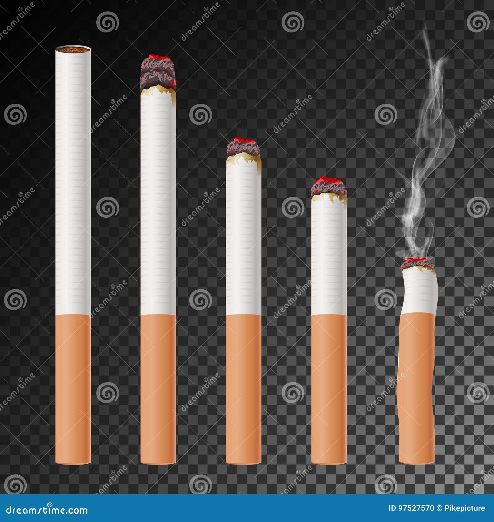 Papierosu Ustalony wektor Realistyczny papierosowy krupon Różne sceny oparzenie ilustracja Płonący Klasyczny dymienie