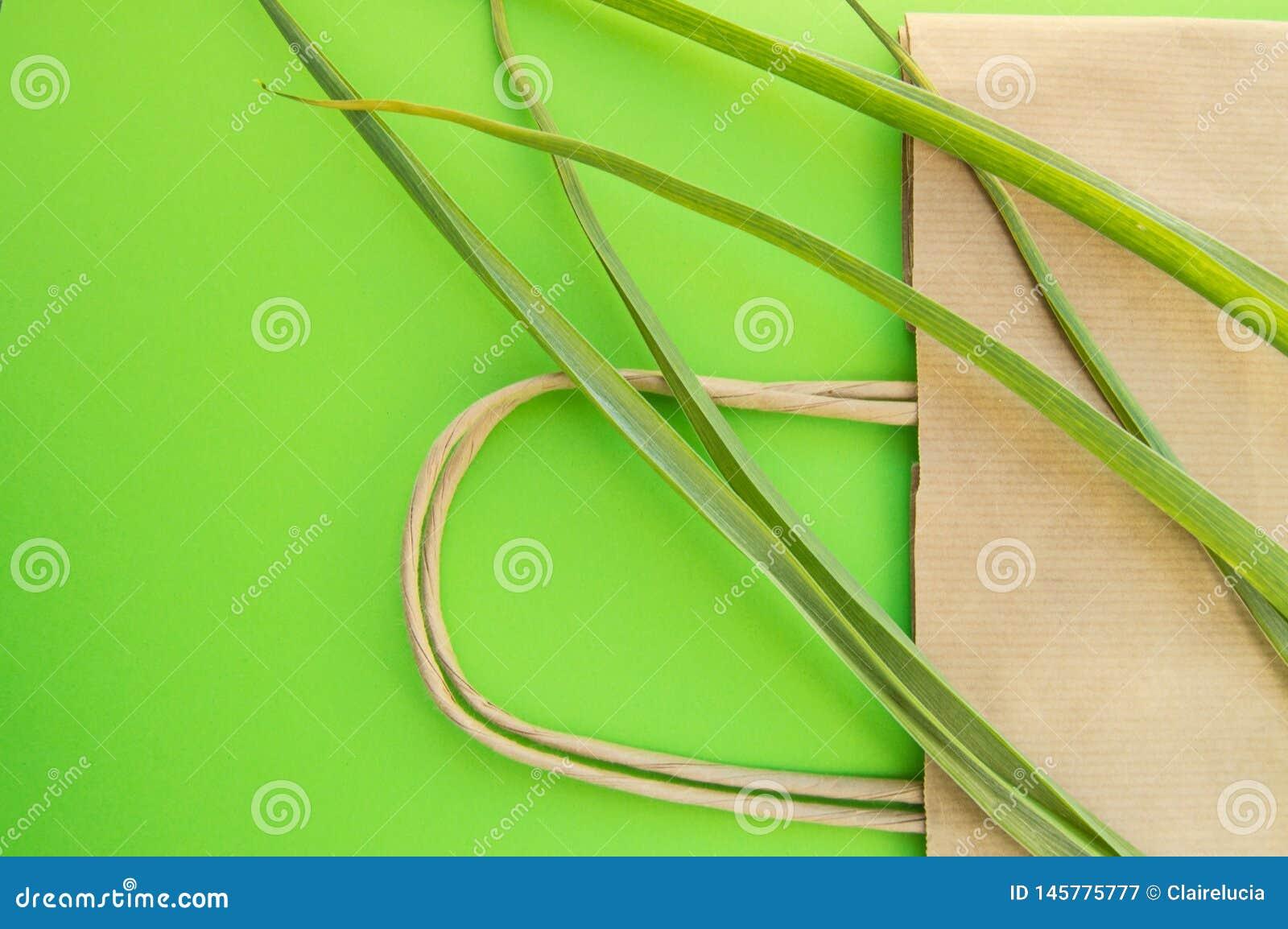 Papierowa torby na zakupy eco odg?rnego widoku p?aska pozycja z zielnymi ro?linami na zielonym tle, zero ja?owych ekologii poj?ci