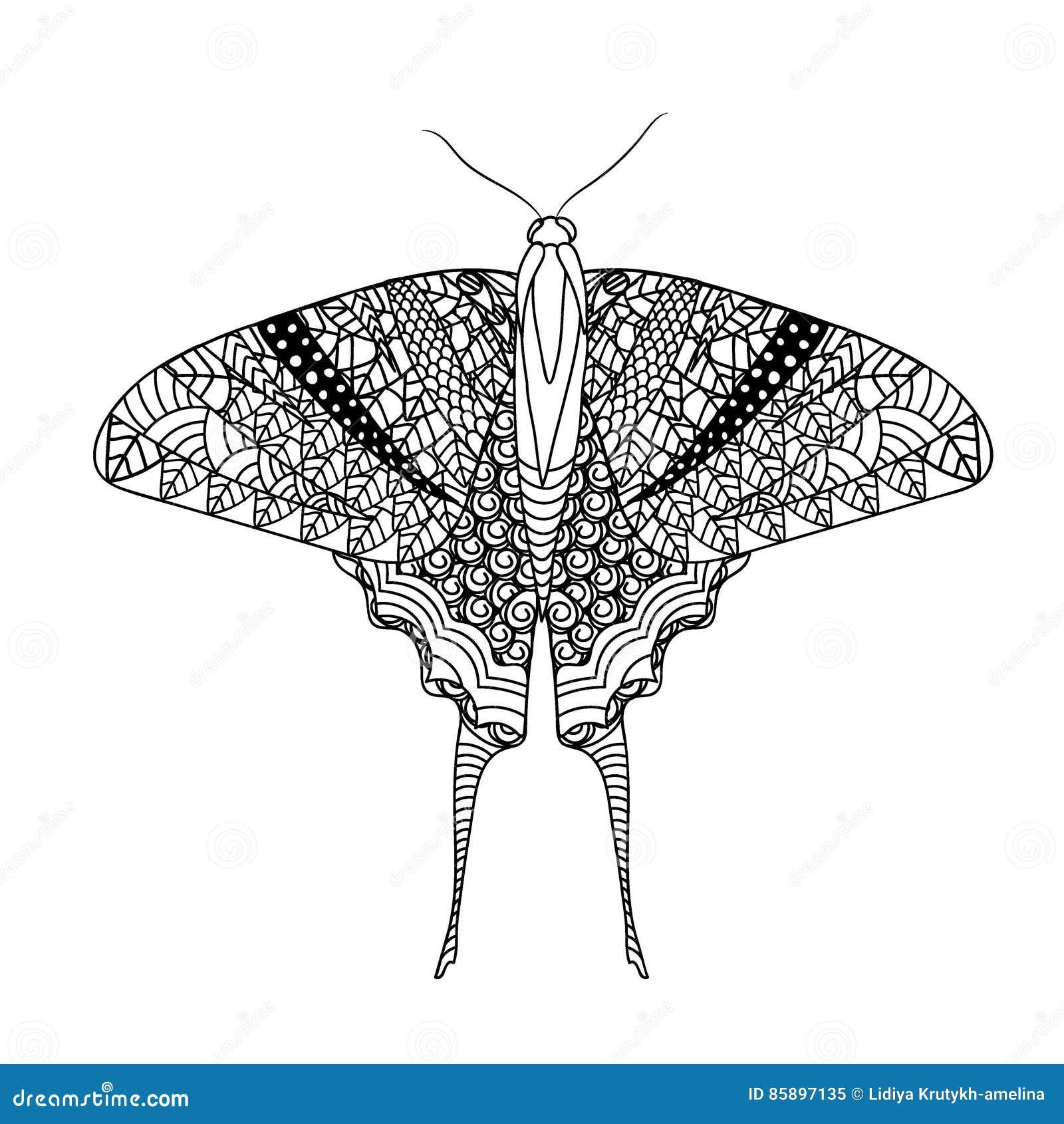Papillon avec le modèle ethnique de griffonnage Zentangle a inspiré le modèle pour d anti pages de livre de coloriage d effort po