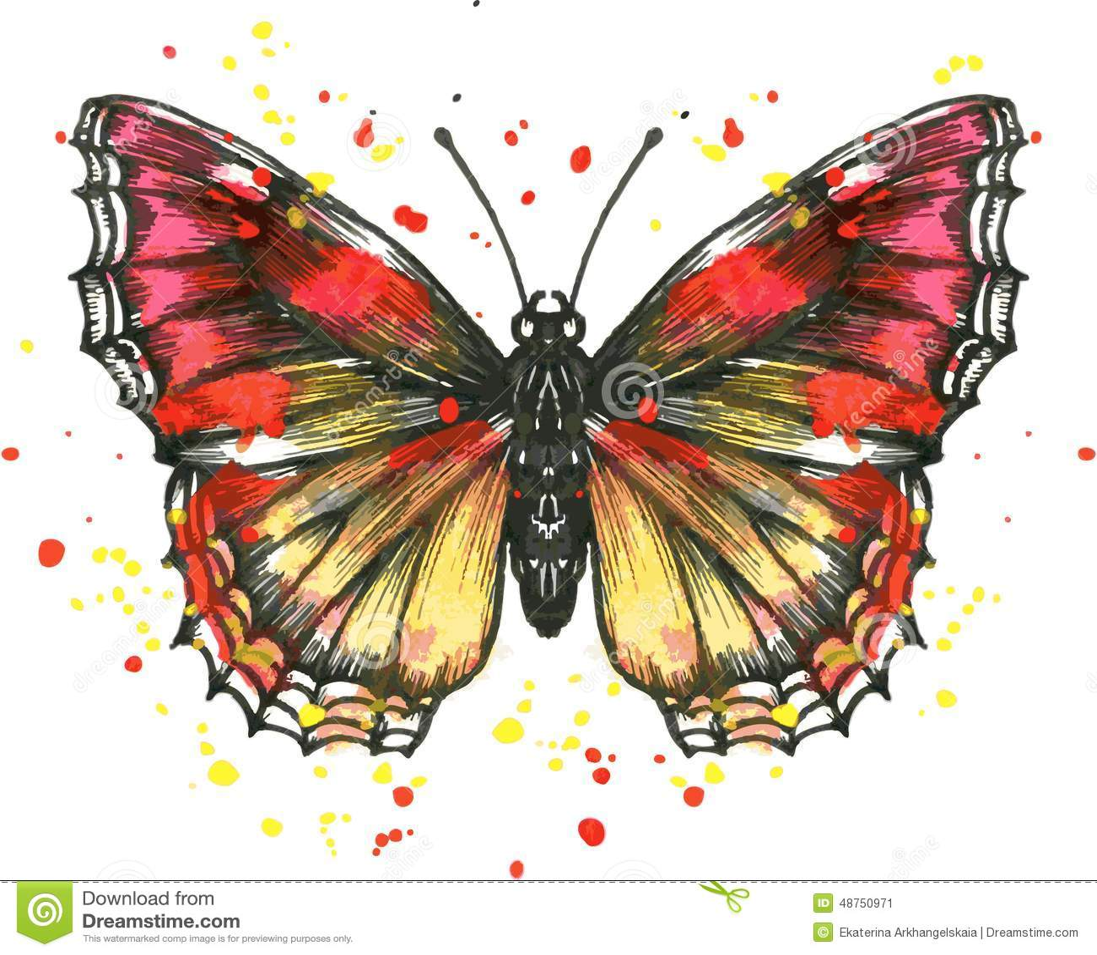 papillon de vecteur dans l 39 aquarelle illustration de vecteur illustration du illustration. Black Bedroom Furniture Sets. Home Design Ideas
