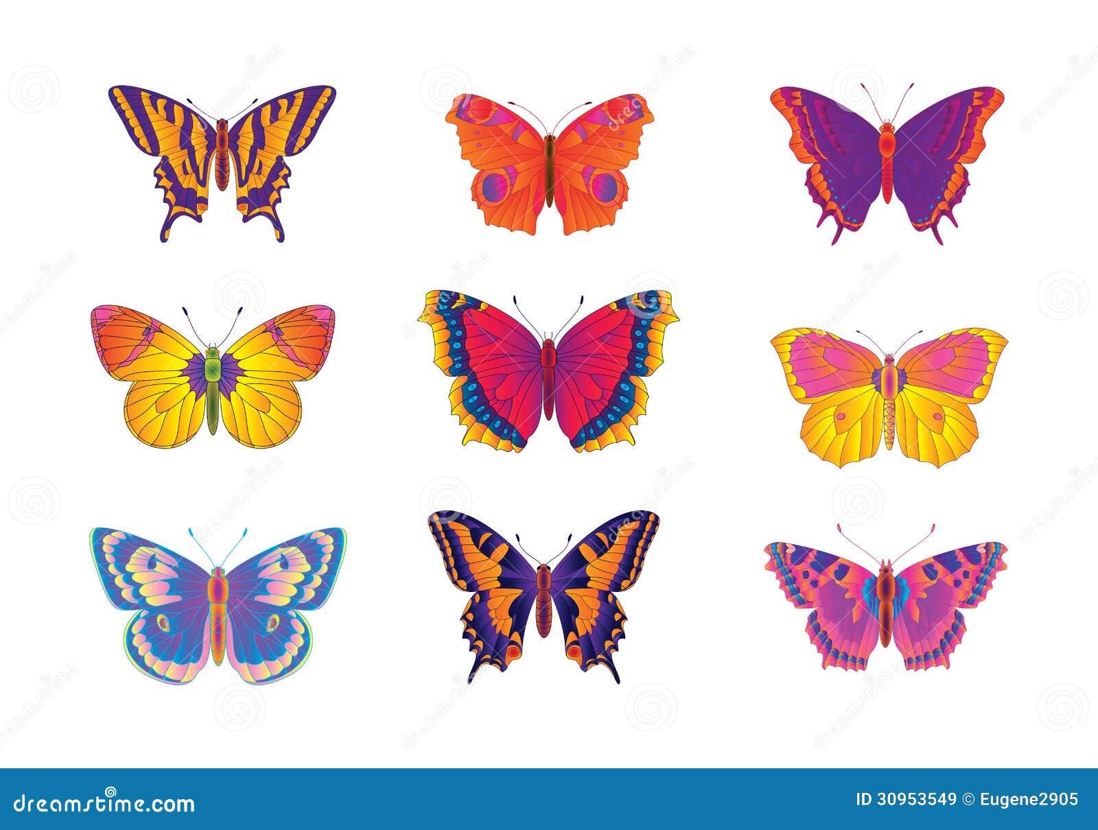 Papillons multicolores illustration stock image du - Image papillon a colorier ...