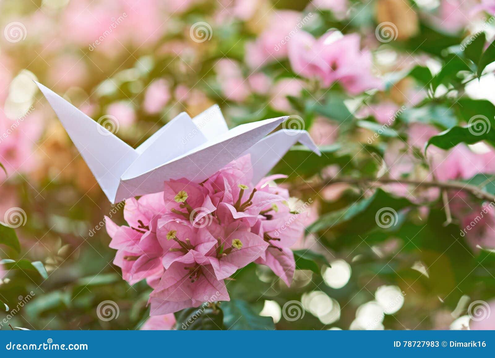 Pappers- svan på blomman