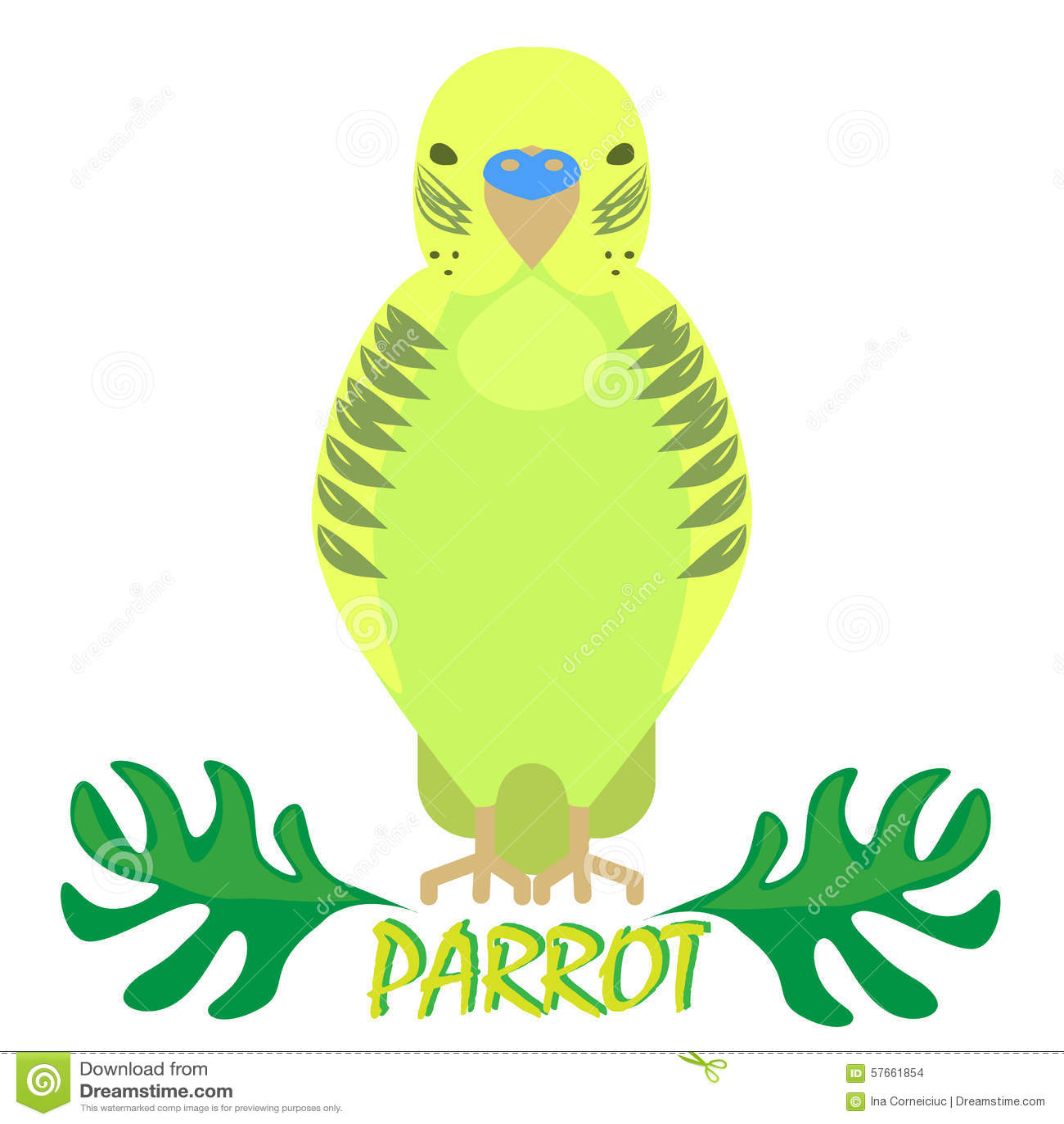 Papuga odosobniony frontowy widok na bielu Zielony ptak