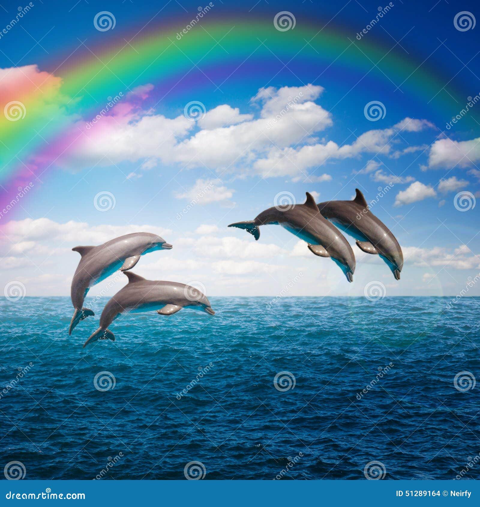 Paquete de delfínes de salto
