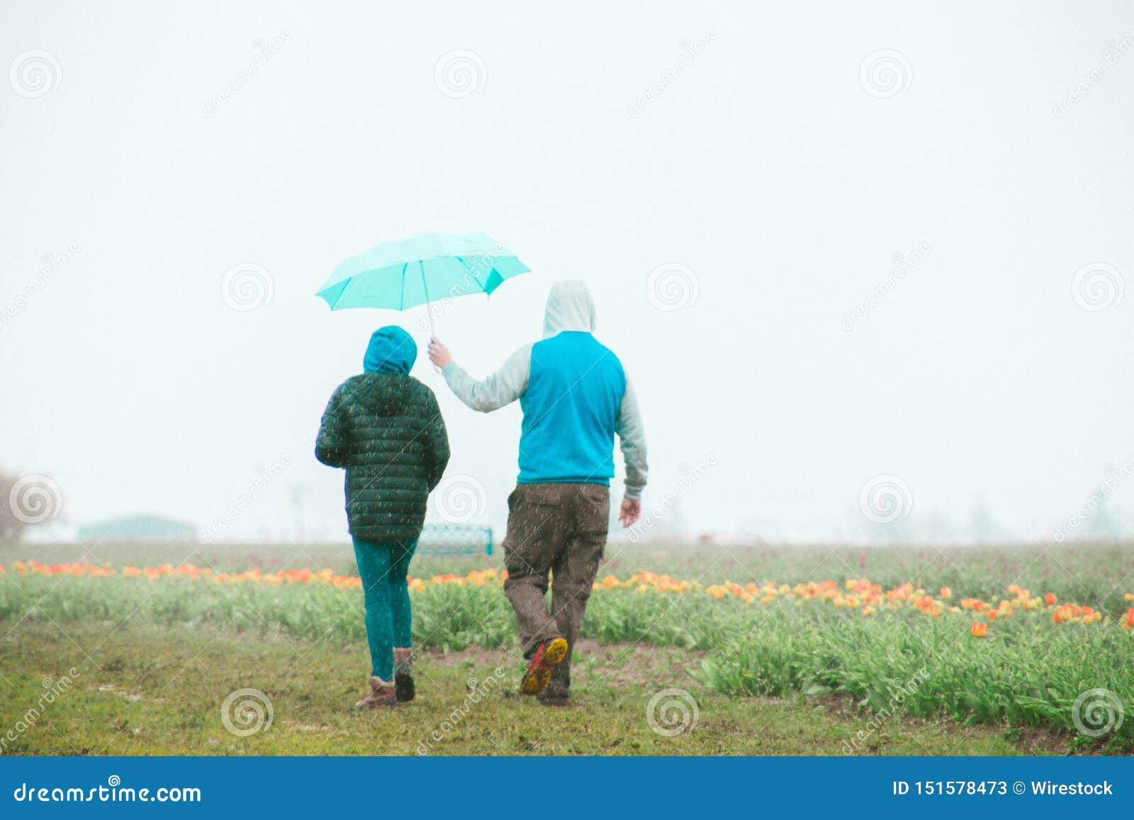 Par som står nära ett tulpanfält med mannen som rymmer ett paraply över kvinnligns huvud