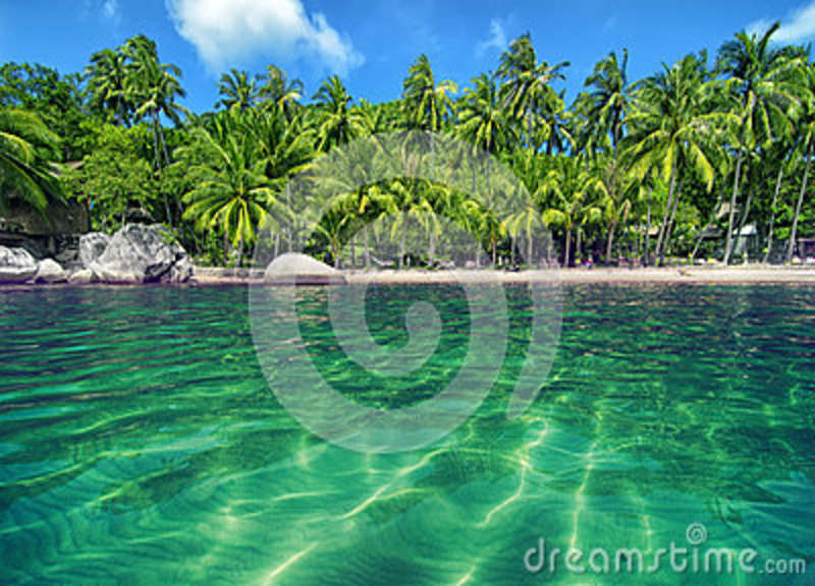 Paraíso tropical com água e a luxúria de turquesa mais verdes