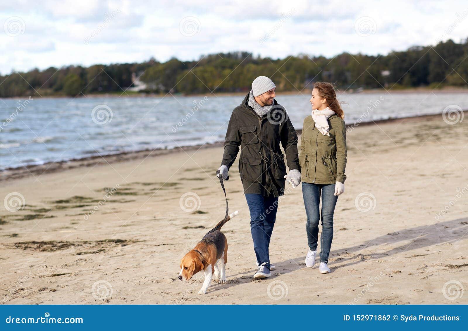 Para z beagle psa odprowadzeniem wzdłuż jesieni plaży