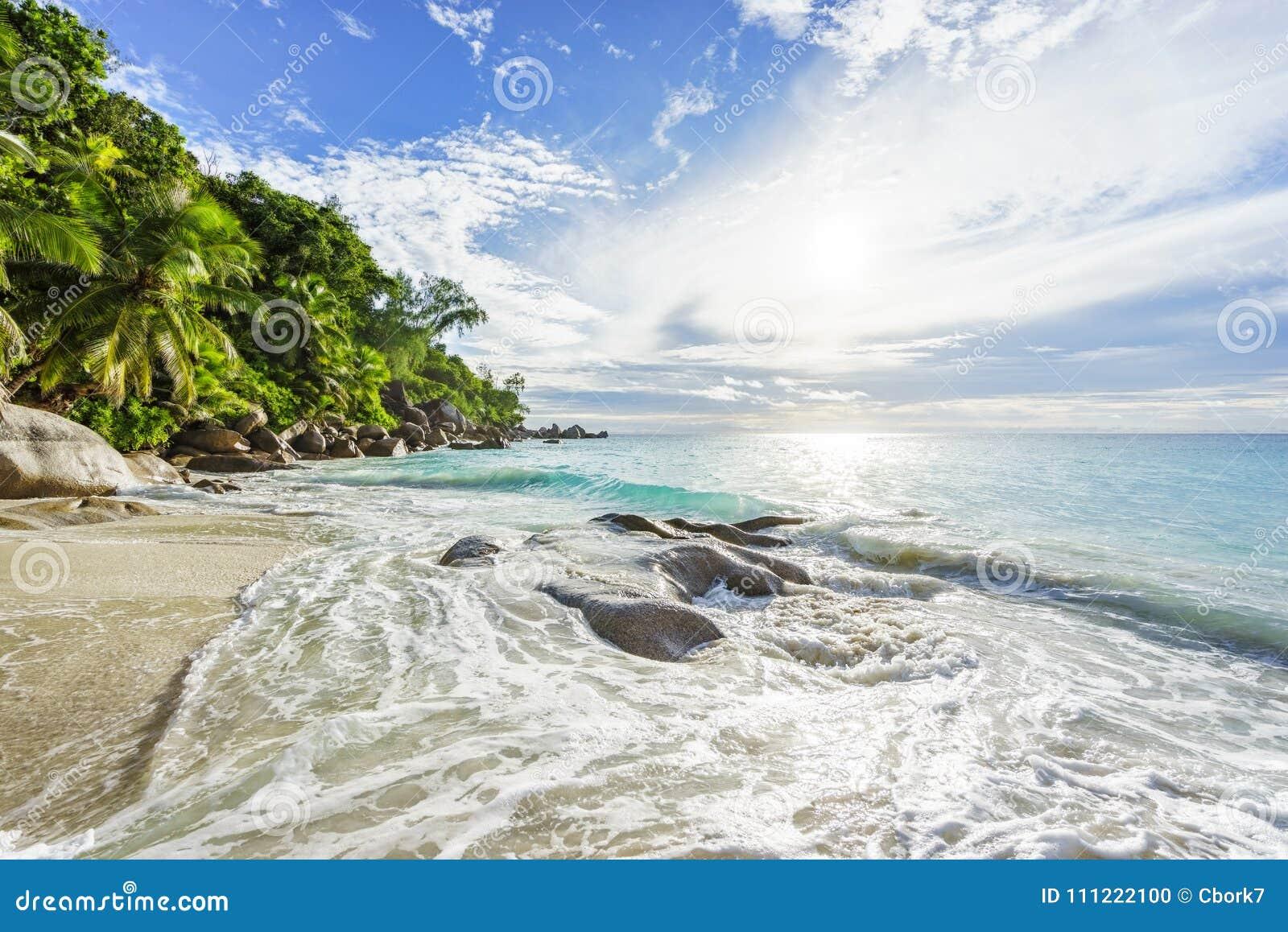 Paradijs tropisch strand met rotsen, palmen en turkoois wate