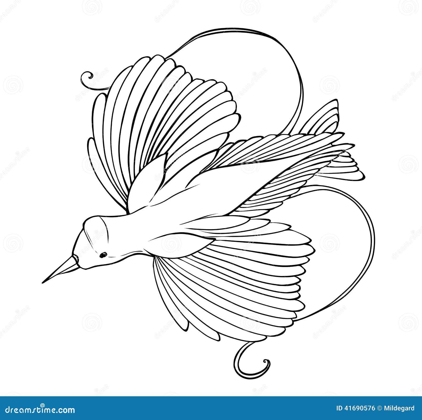 paradijsvogel kleurende pagina stock illustratie afbeelding