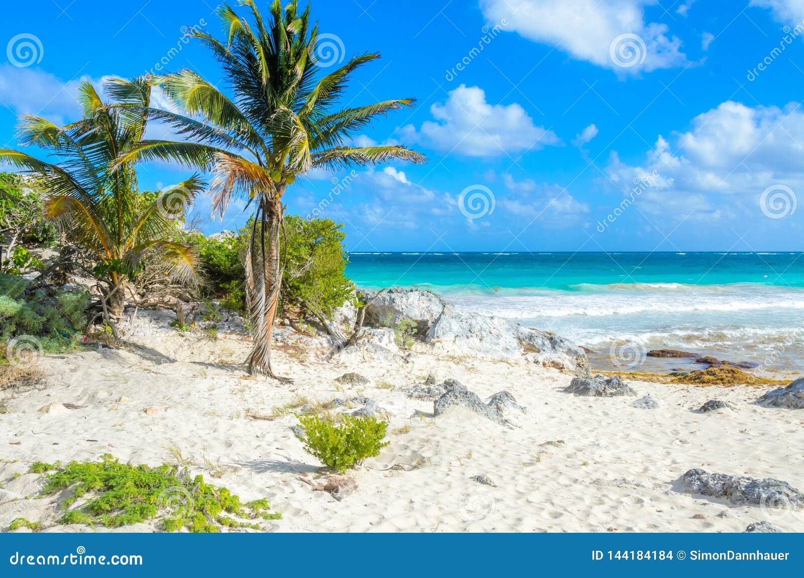 Paradise beach of Tulum, Quintana Roo, Mexico. Mayan ruins of Tulum at tropical coast