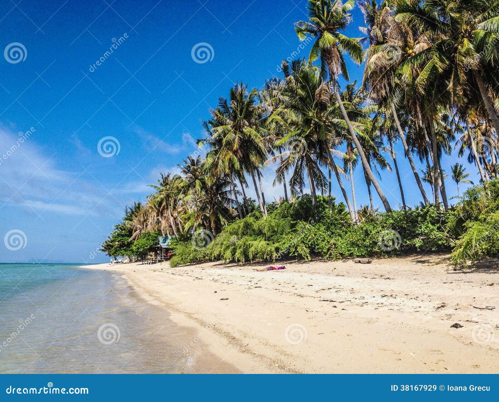 Tropical Island Paradise: Paradise Tropical Island Stock Image. Image Of Empty