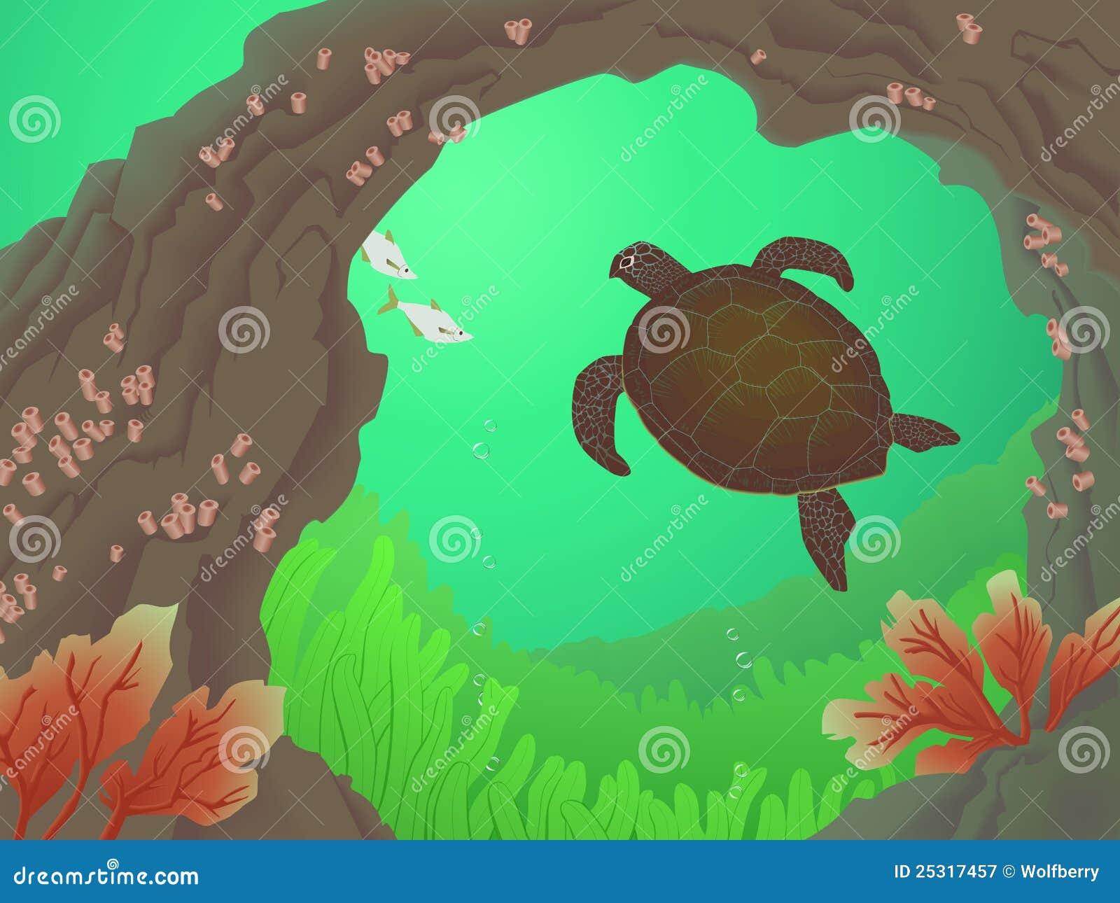 Paradiso della tartaruga di mare fotografia stock libera for Tartaruga di palude