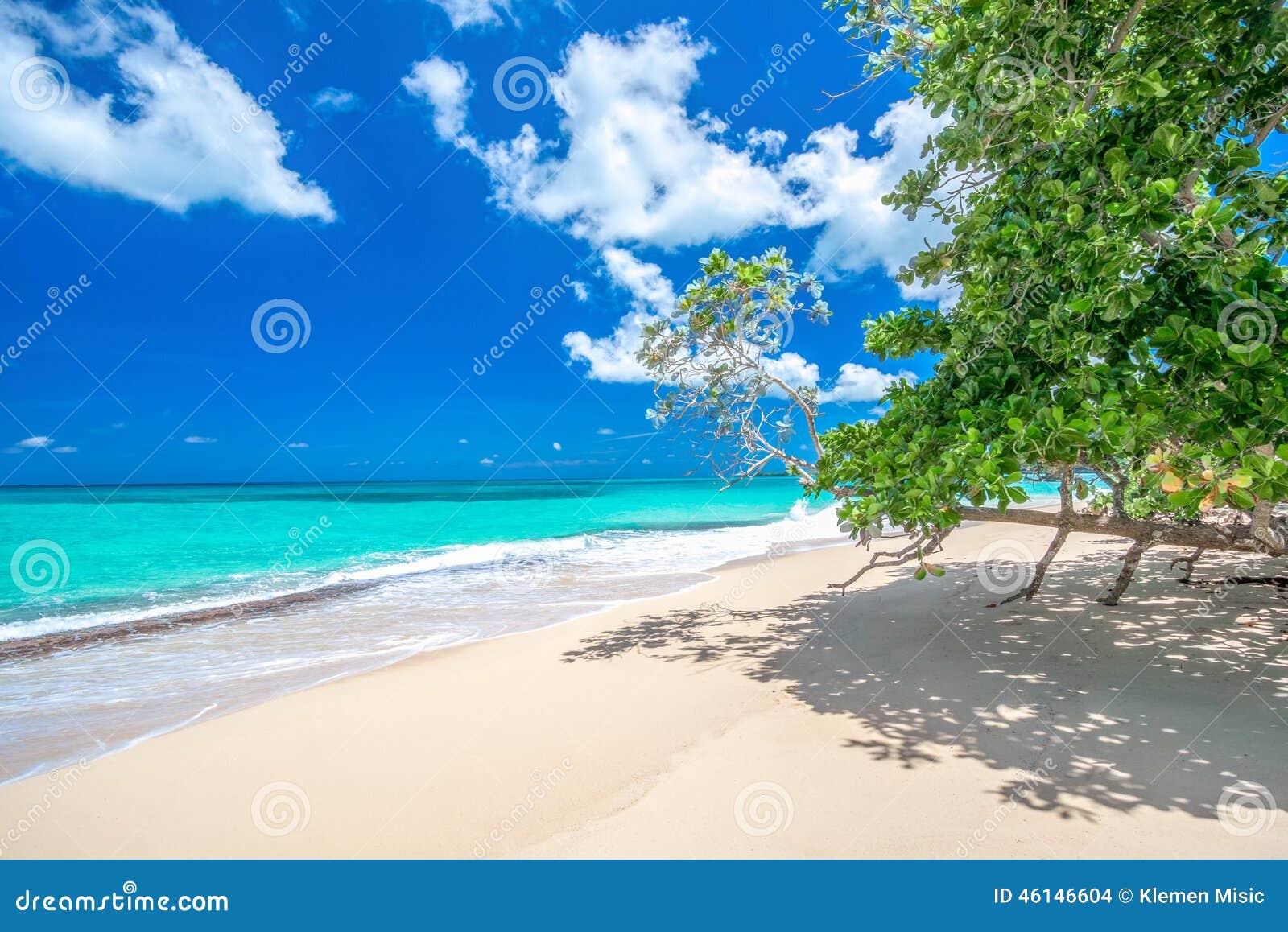 Paradisstrand Playa Rincon, ansedd av de 10 bästa stränderna i karibiskt, Dominikanska republiken