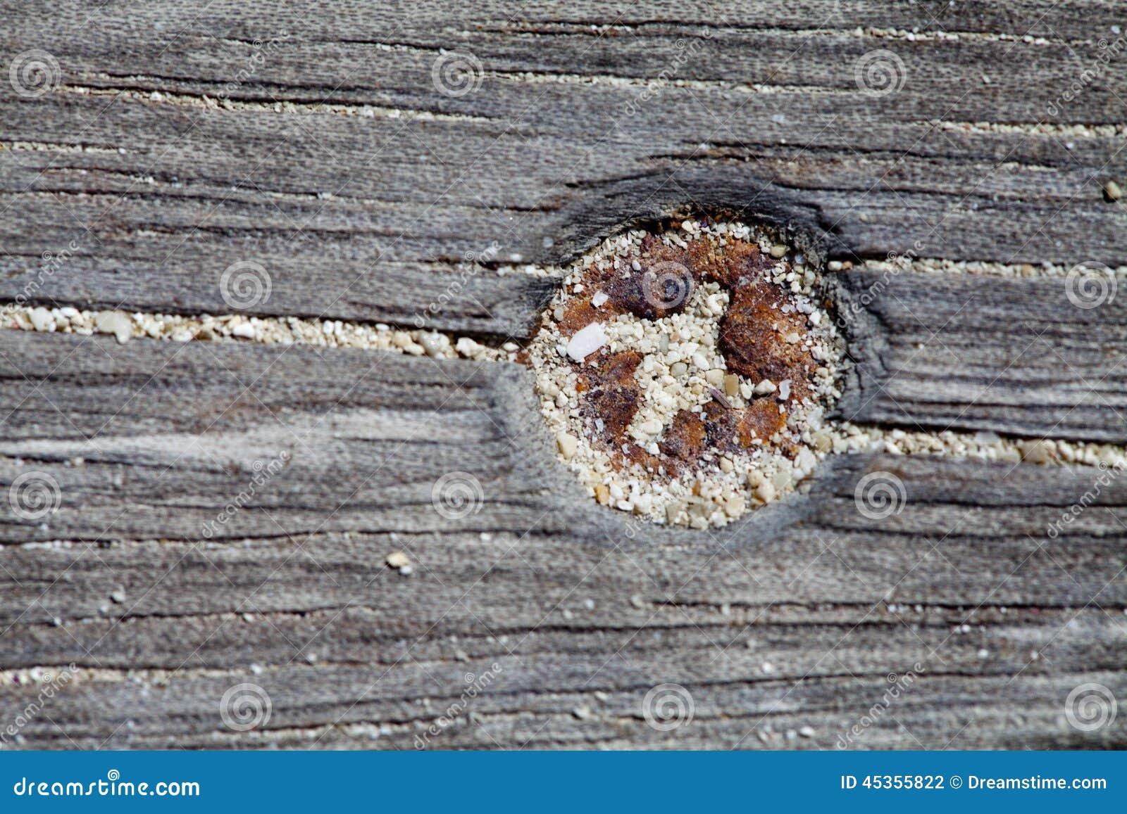 Parafuso oxidado