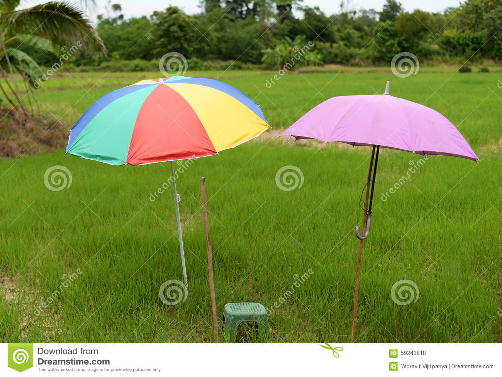 Paraguas colorido