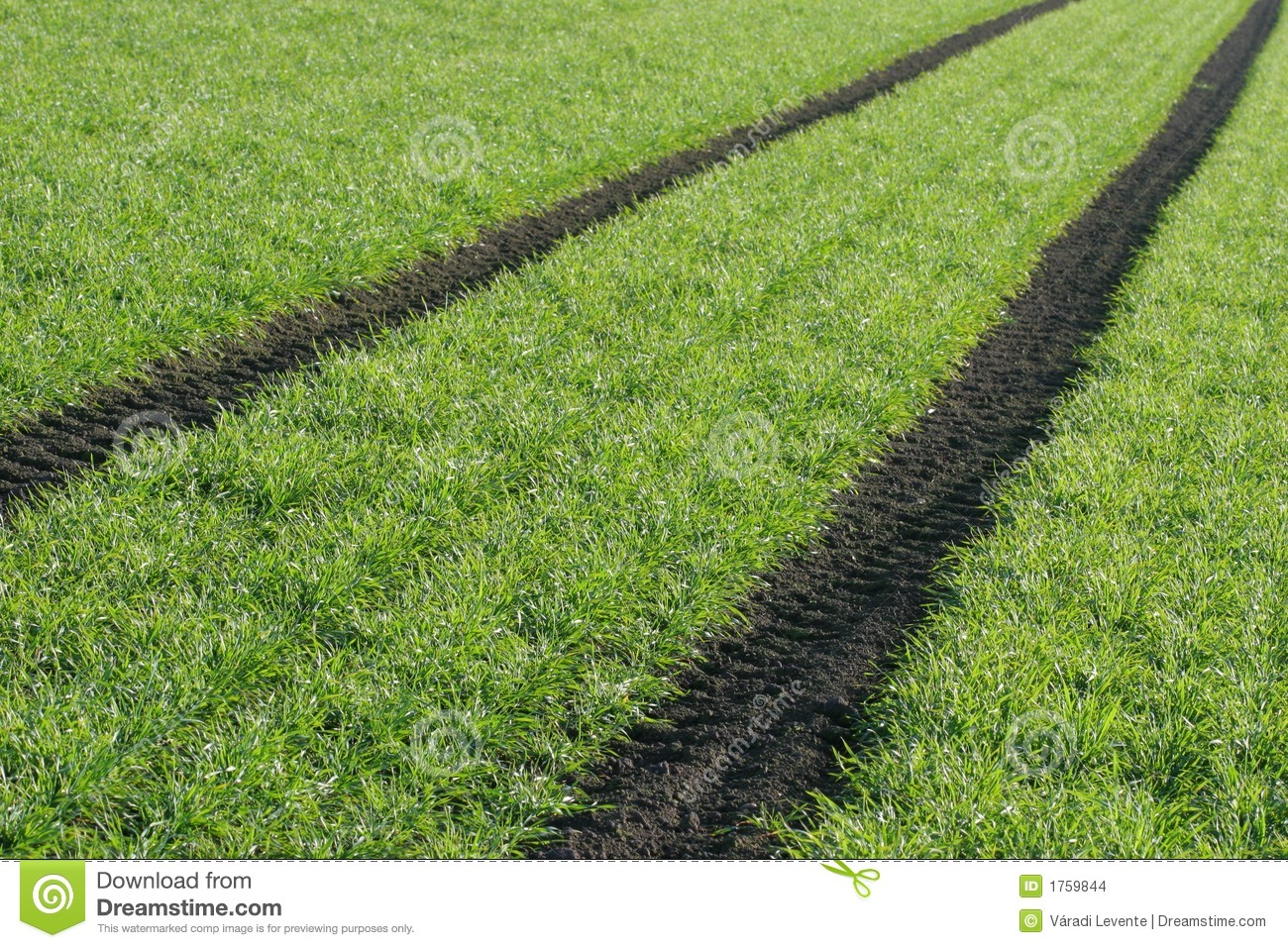 Parallel Lines Stock Images - Image: 1759844