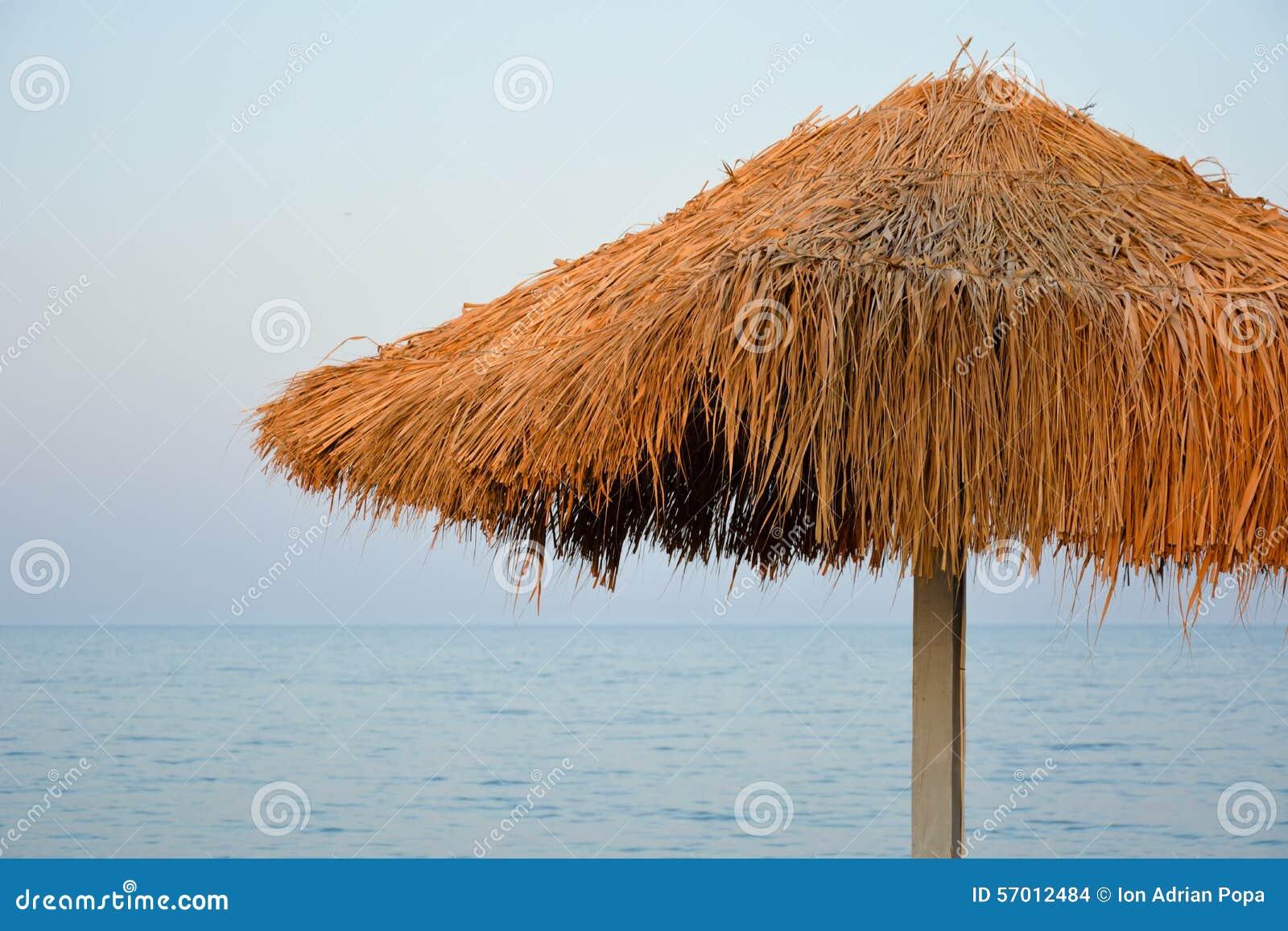 Parapluie de Reed au bord de la mer