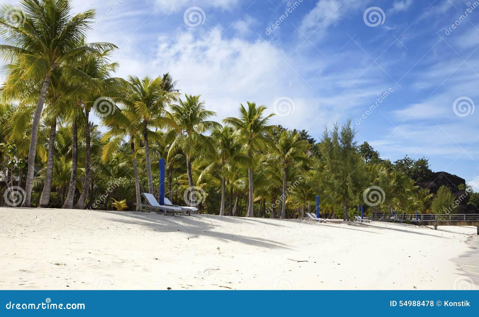 Paraply- och chaisevardagsrum på stranden