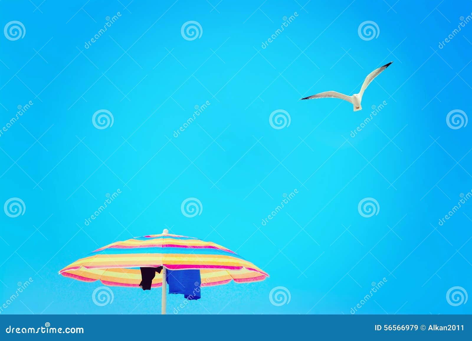 Download Parasol κάτω από πετώντας Seagull Στοκ Εικόνα - εικόνα από χαλαρώστε, ενιαίος: 56566979