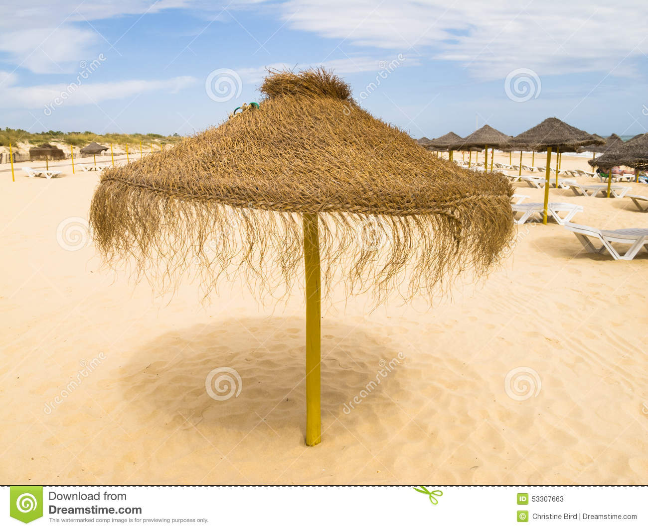 parasol de paille sur une plage au portugal photo stock image 53307663. Black Bedroom Furniture Sets. Home Design Ideas