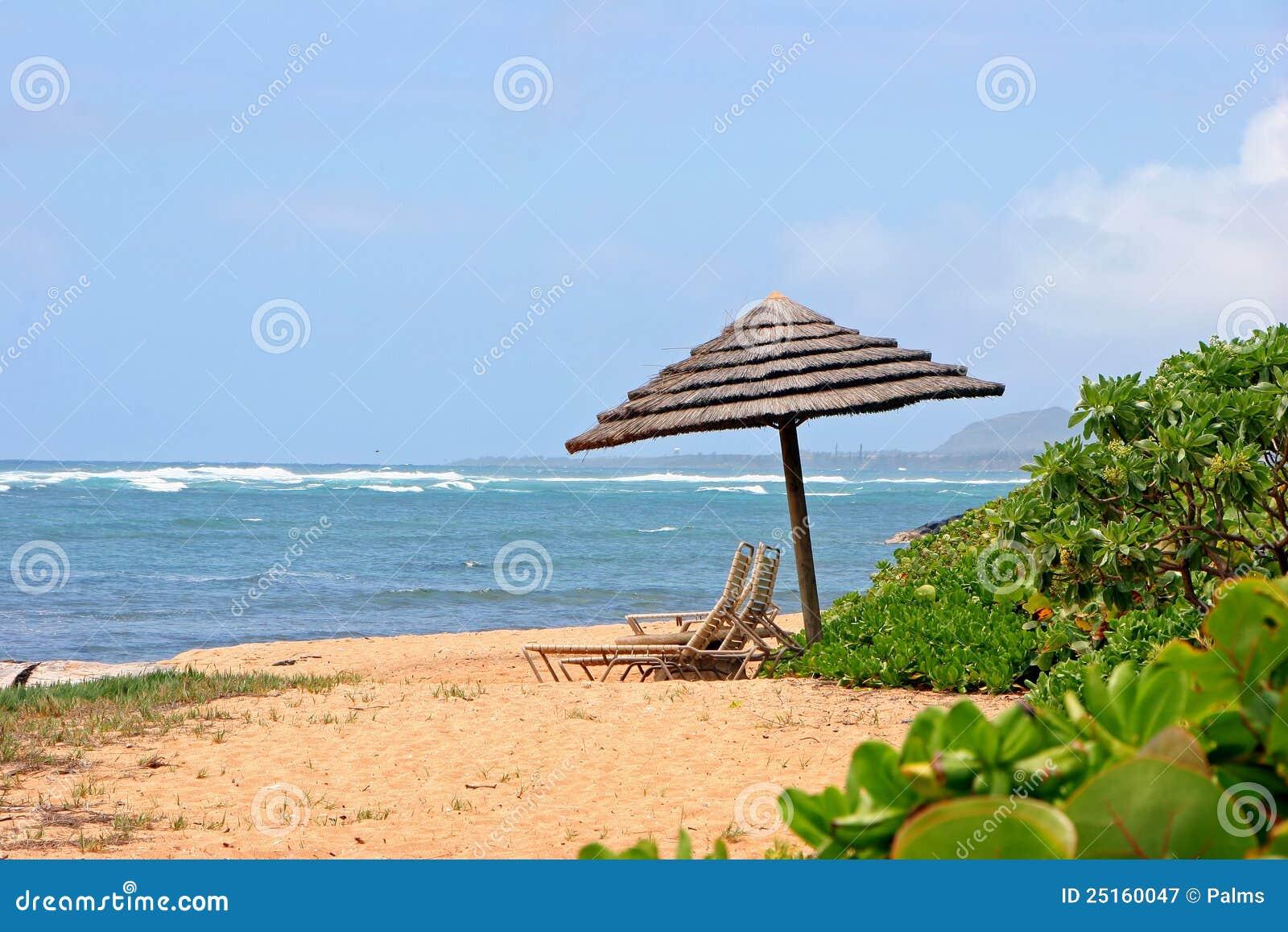 Parasol op tropisch strand royalty vrije stock fotografie afbeelding 25160047 - Zon parasol ...