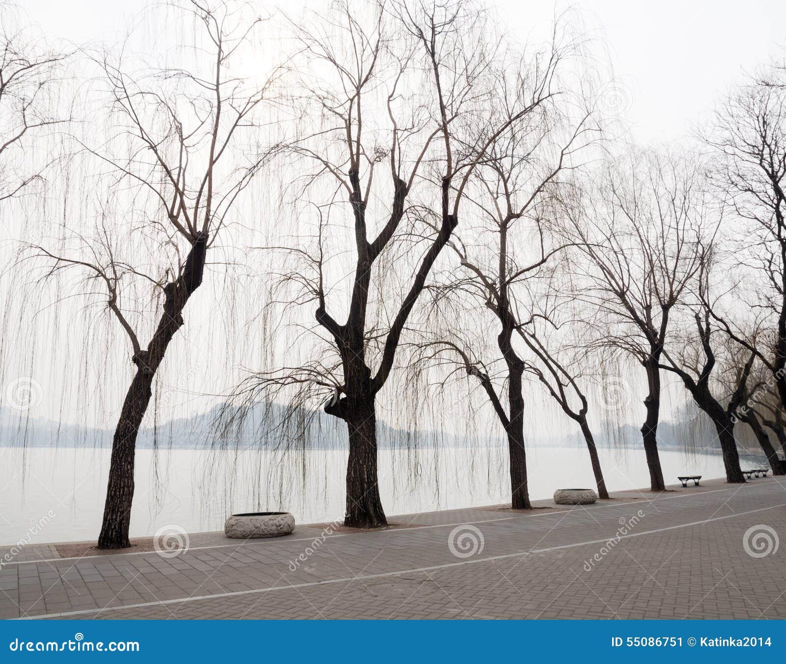 Parc de Beihai en premier ressort