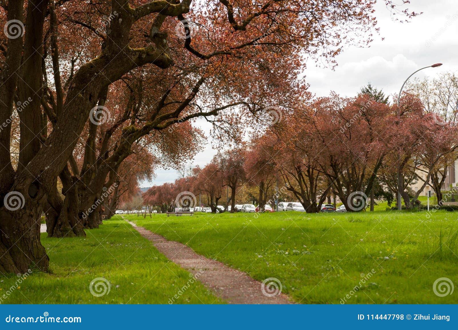 Parc de Remich