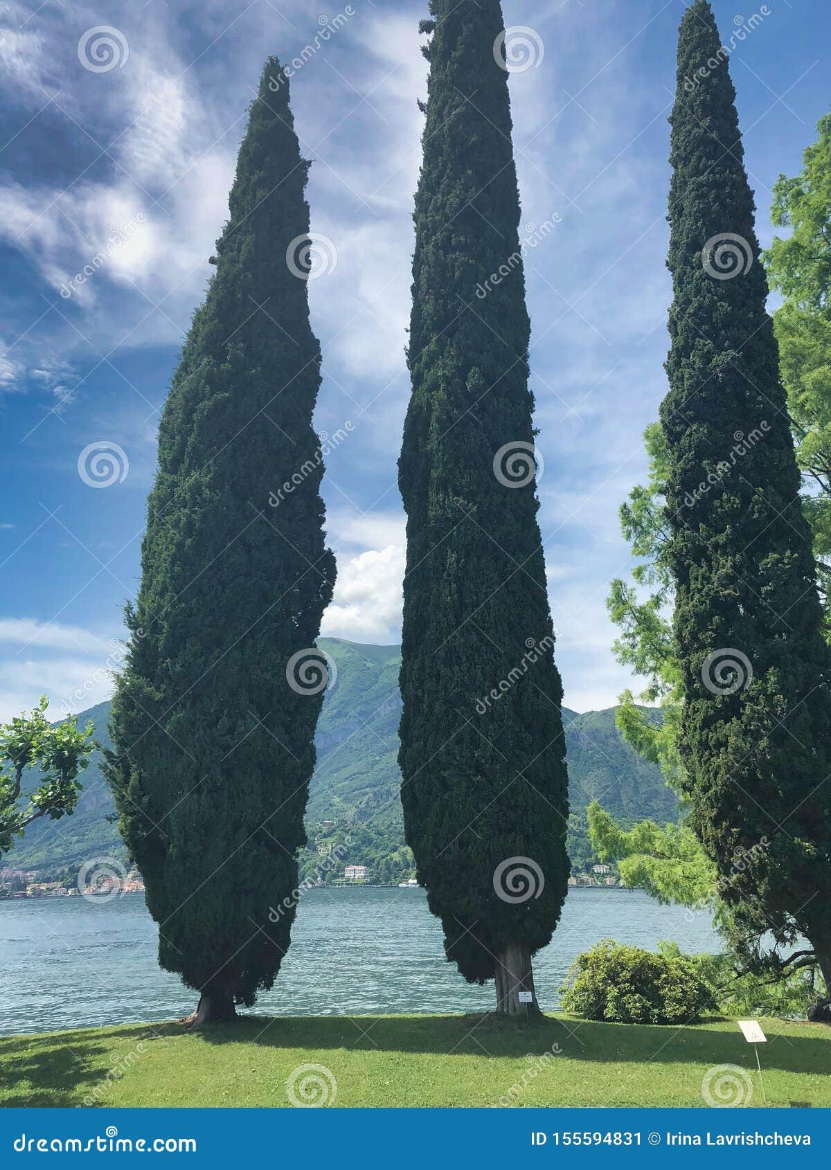 Parc de villa Melzi à Bellagio au lac italien célèbre Como, ciel nuageux