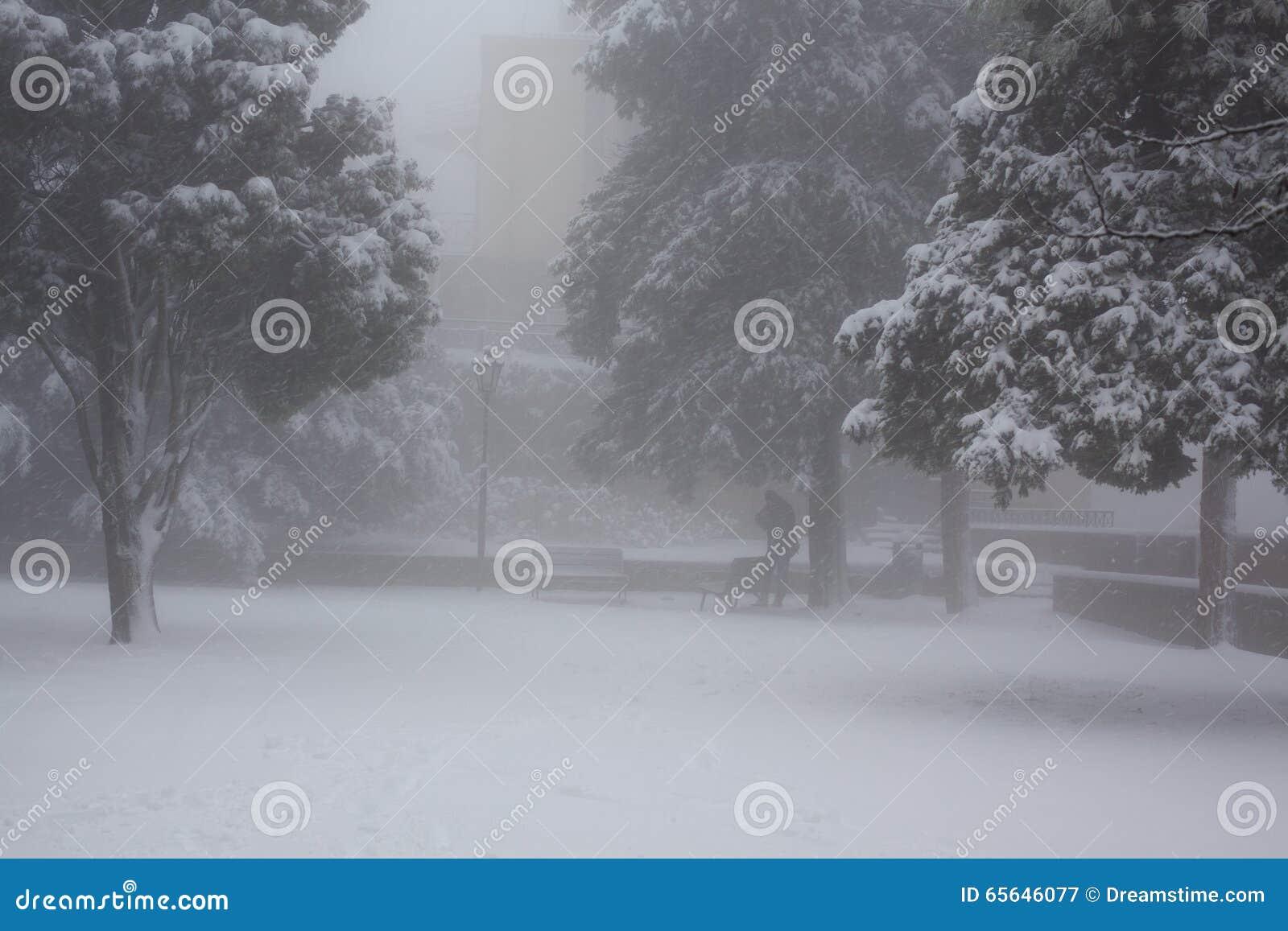 Parc de ville dans une tempête de neige