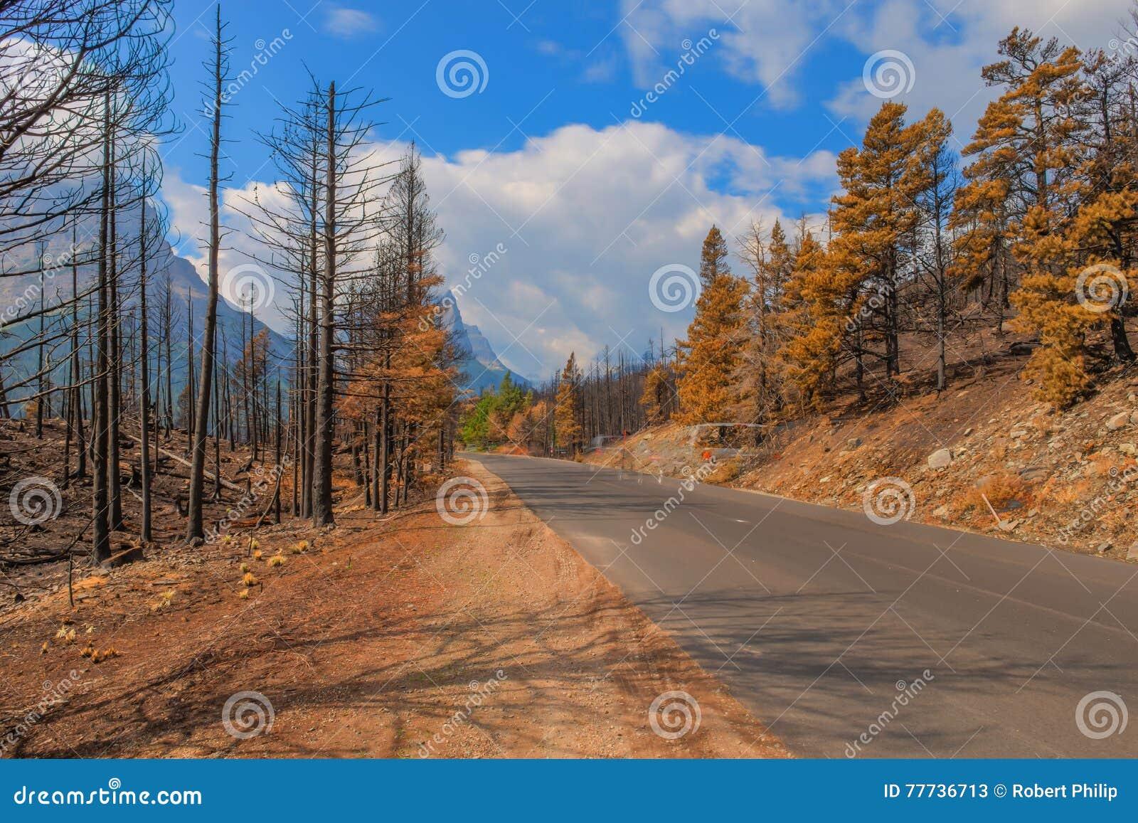 Parc 2015 national de glacier de Reynolds Creek Wildland Forest Fire de conséquence