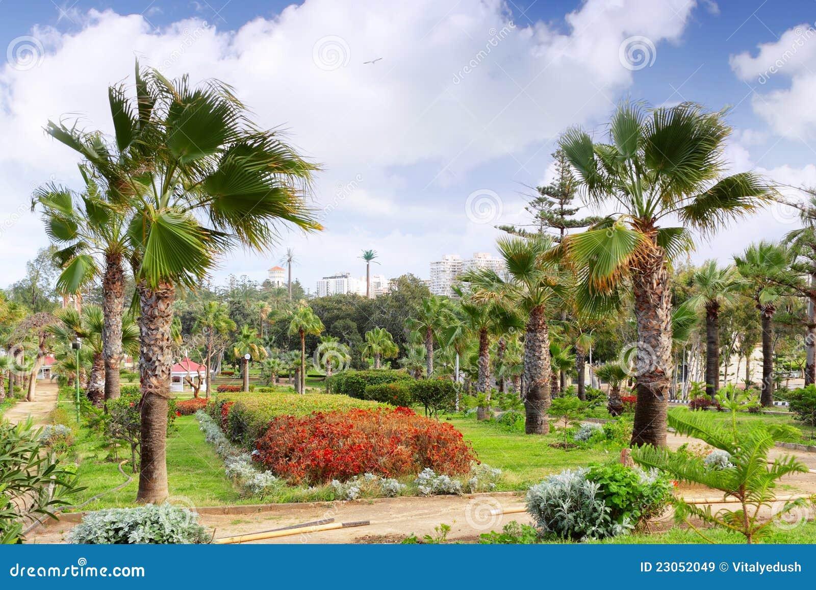 Parc royal Montazah, l Alexandrie. L Egypte.