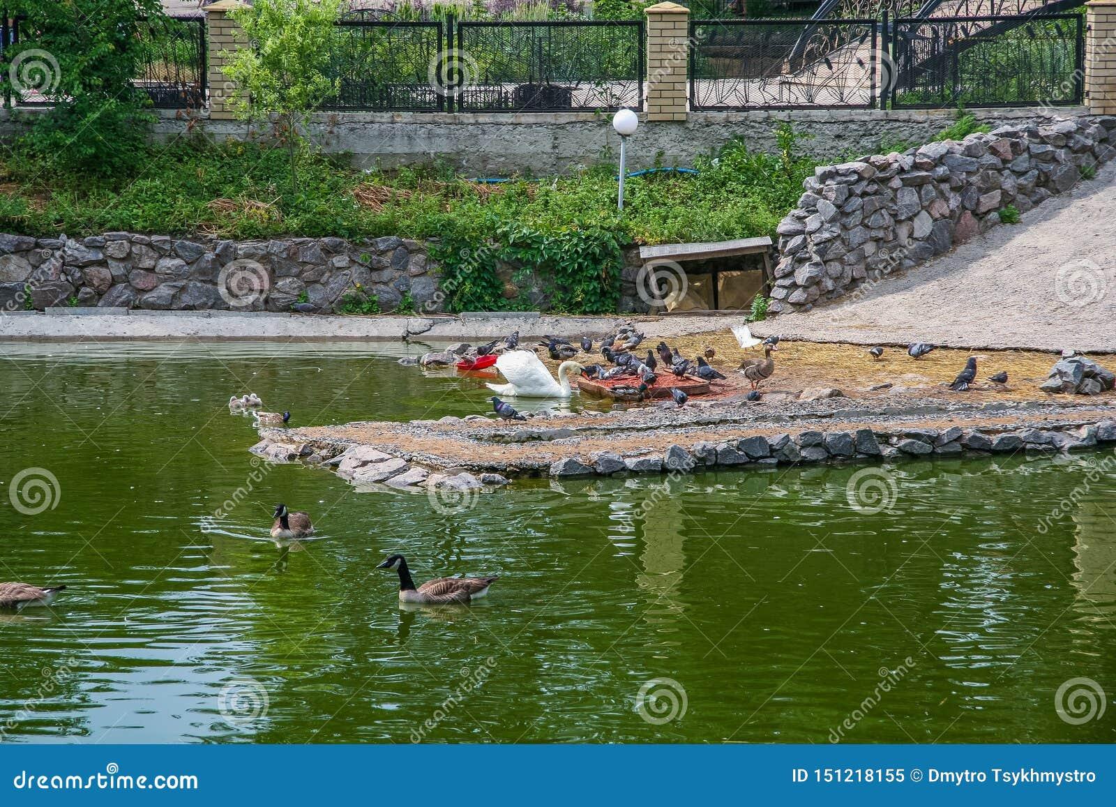 Parc zoologique d état de Kharkiv